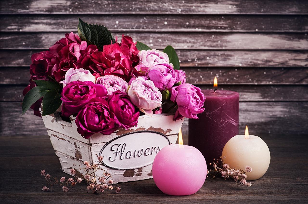 Фото Английский букет роза Цветы Слово - Надпись Ваза Свечи английская инглийские Букеты Розы слова текст цветок вазе вазы