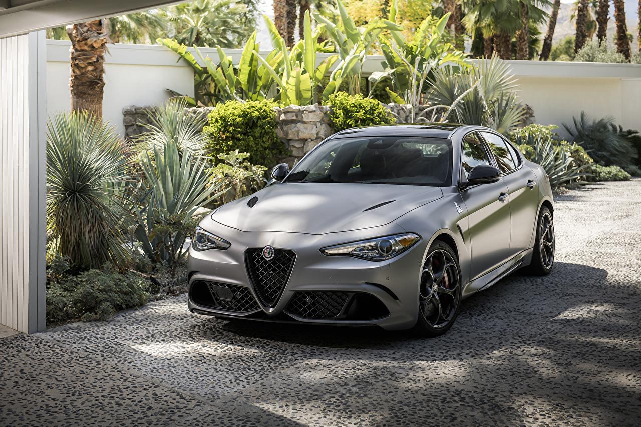 Картинка Alfa Romeo 2019 Giulia Quadrifoglio NRING серебряный Автомобили Альфа ромео серебряная серебристая Серебристый авто машина машины автомобиль