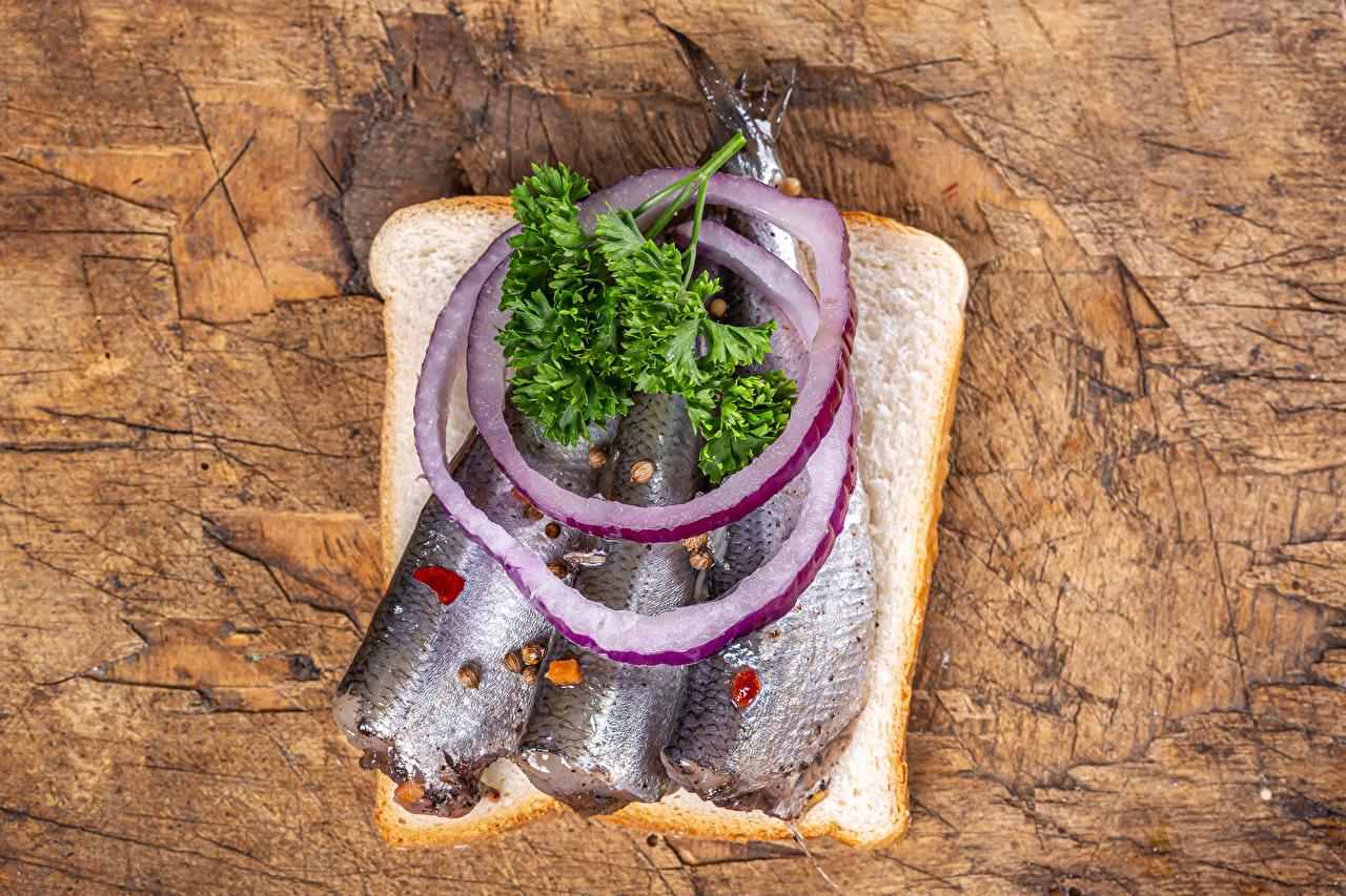 Обои для рабочего стола Лук репчатый Хлеб Рыба бутерброд Продукты питания Доски Бутерброды Еда Пища