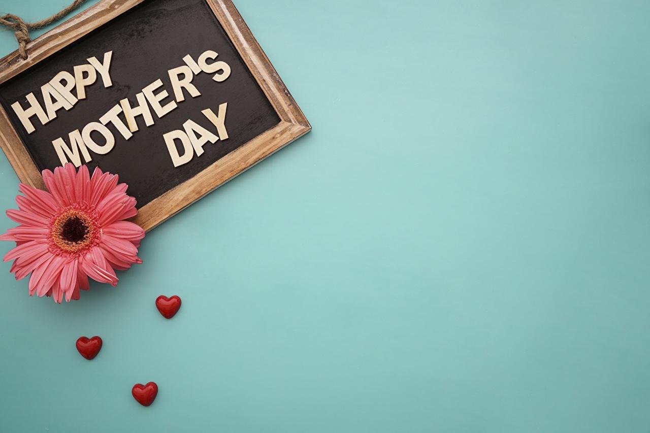 Обои для рабочего стола День матери гербера цветок Шаблон поздравительной открытки Герберы Цветы