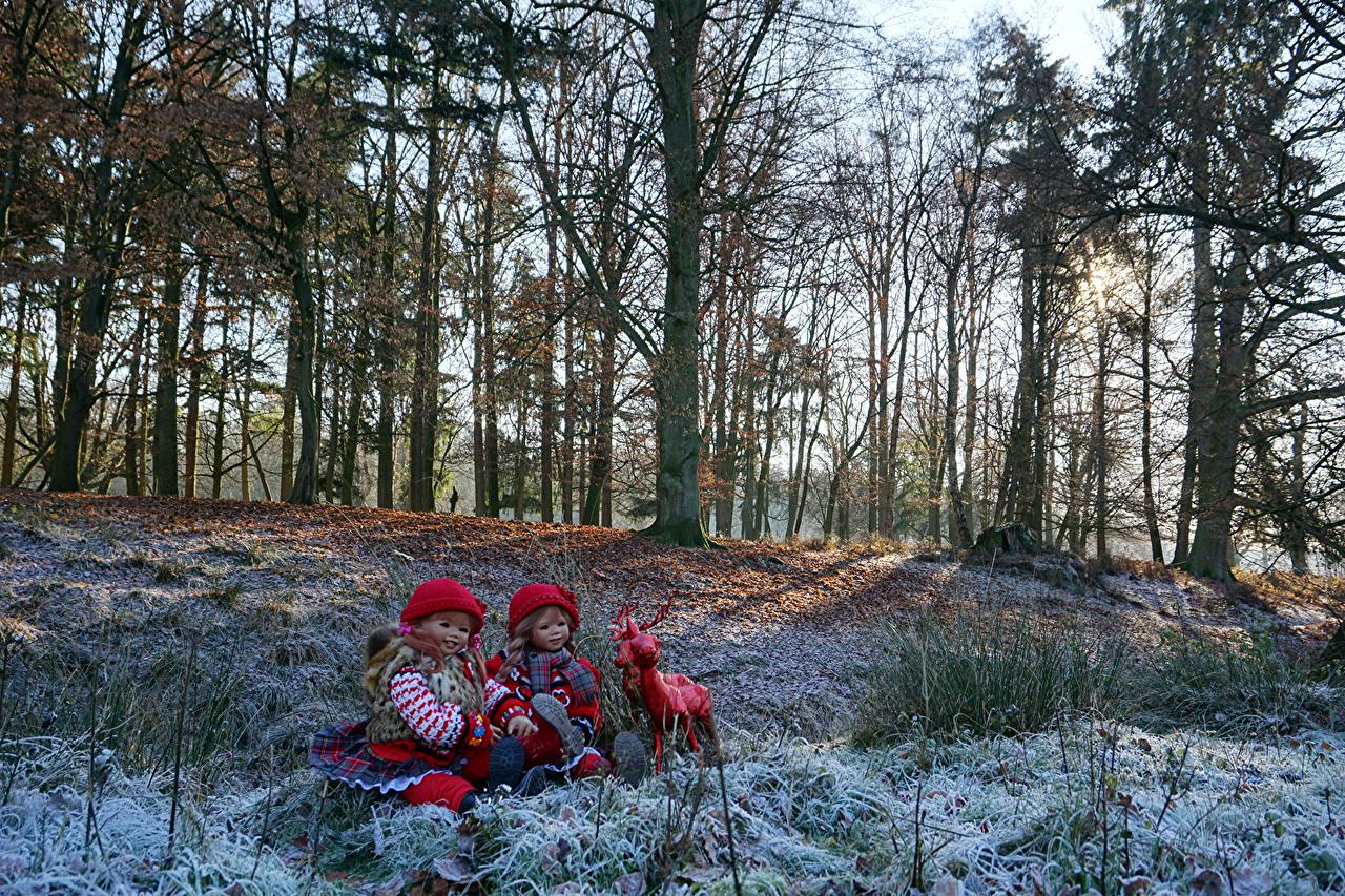 Фотография Олени девочка Германия Кукла Grugapark Esse Зима Природа Парки дерево Девочки куклы зимние дерева Деревья деревьев