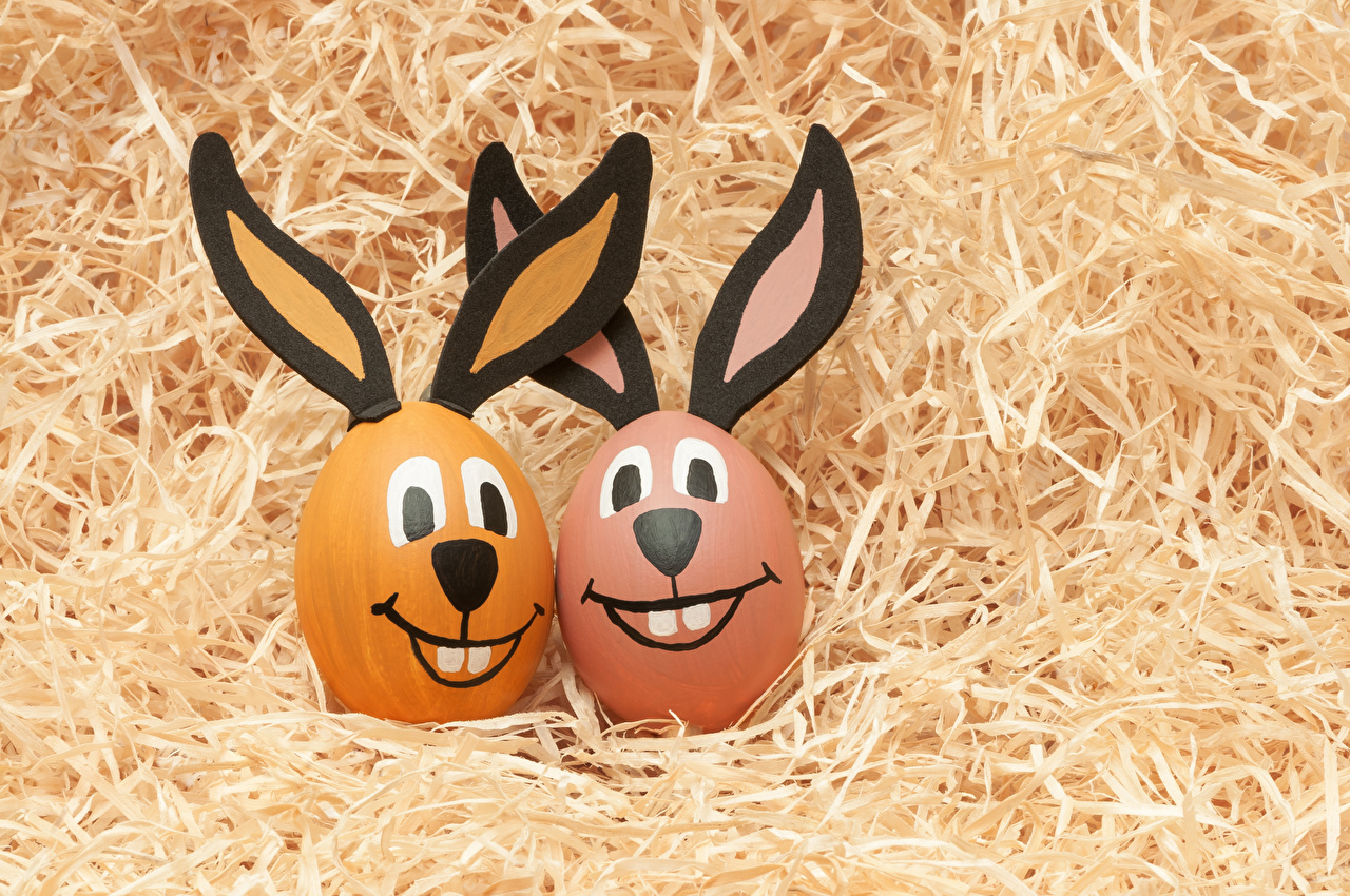 Картинки Пасха кролик яйцо вдвоем Креатив соломе Кролики яиц Яйца яйцами 2 два две Двое креативные оригинальные Солома