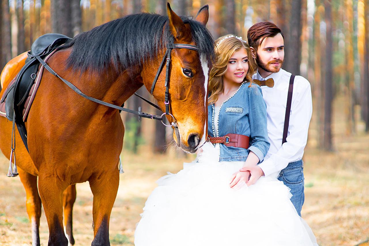 Обои для рабочего стола лошадь Невеста свадьбе Мужчины два молодая женщина Лошади брак Свадьба свадьбы невесты свадебные 2 две Двое вдвоем Девушки девушка молодые женщины