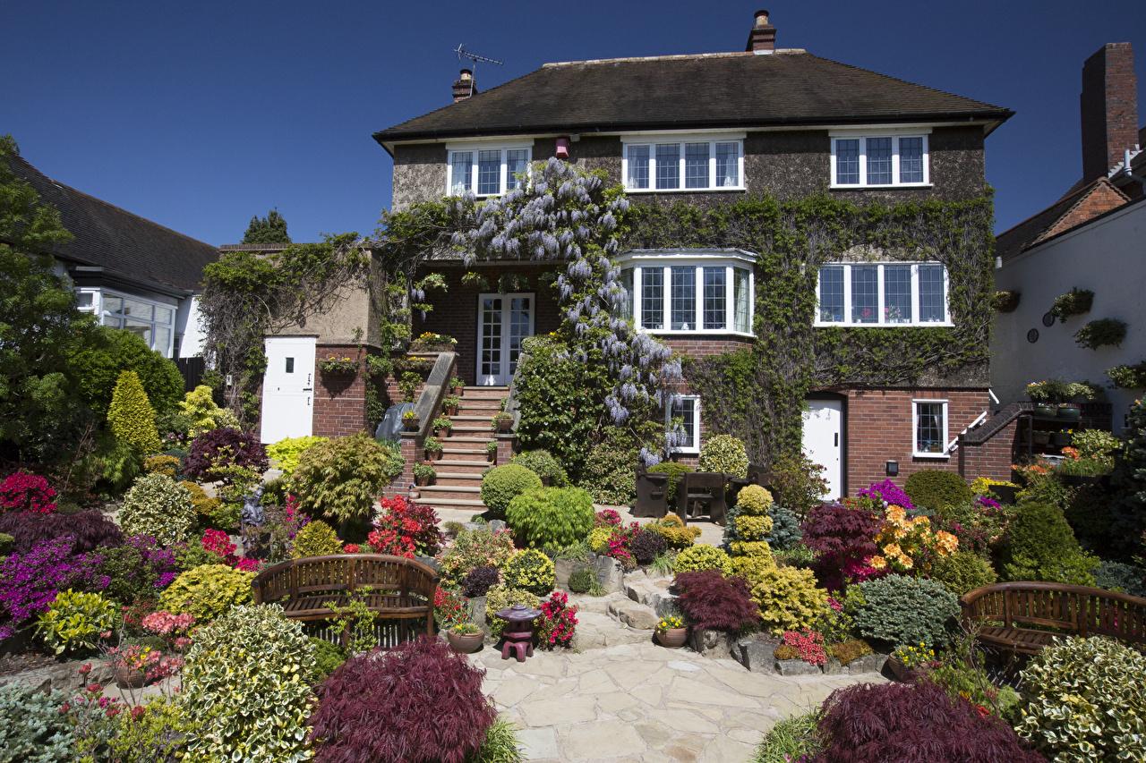 Фотография Англия Walsall Garden Природа Сады Кусты Здания Ландшафтный дизайн Дома