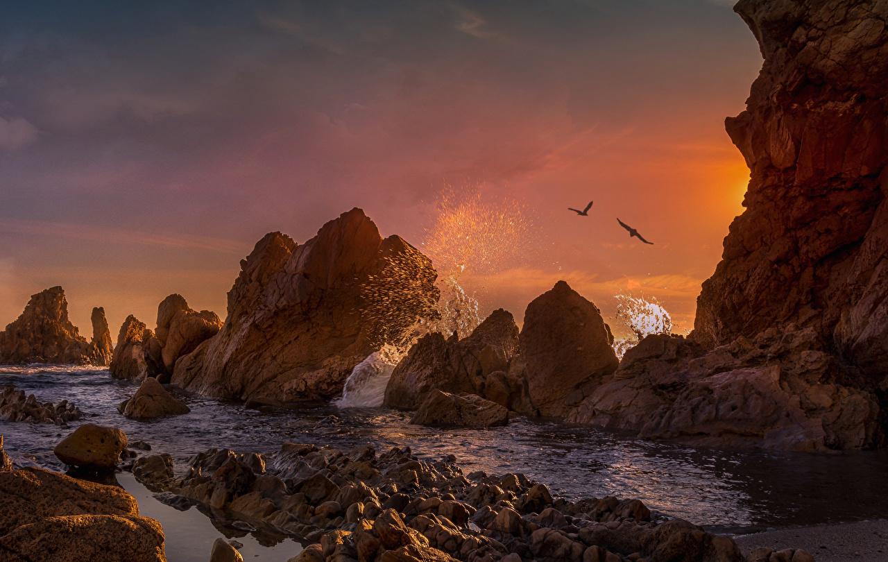 Фотографии Калифорния штаты Corona Del Mar скалы Природа Брызги Рассветы и закаты Побережье калифорнии США Утес Скала скале с брызгами берег