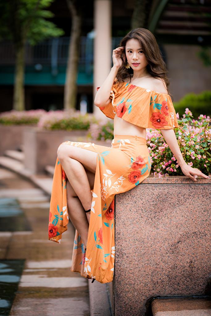 Фото Размытый фон Девушки азиатка Сидит Взгляд  для мобильного телефона боке девушка молодая женщина молодые женщины Азиаты азиатки сидя сидящие смотрит смотрят