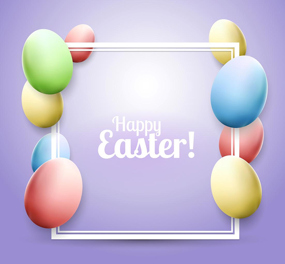Фото Пасха Английский Разноцветные яиц Цветной фон яйцо Яйца яйцами