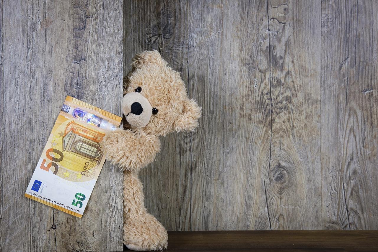 Фотография Евро Купюры Мишки Деньги Доски Банкноты Плюшевый мишка