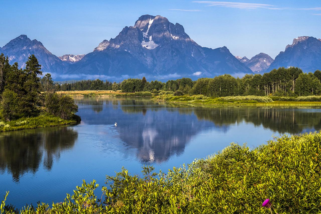 Картинки штаты Grand Teton NP гора Природа Леса Парки Реки США Горы лес парк река речка