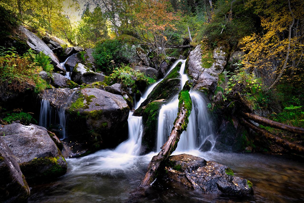 Фотография Андорра Vall del Madriu-Perafita-Claror Природа Водопады Парки мха Камни парк Мох мхом Камень