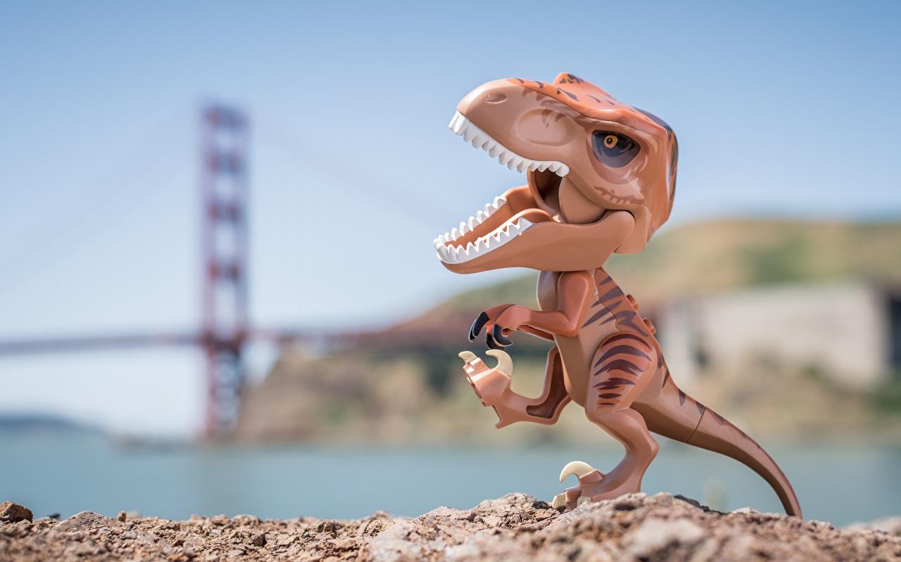 Картинка Тираннозавр рекс динозавр вблизи Игрушки Динозавры игрушка Крупным планом