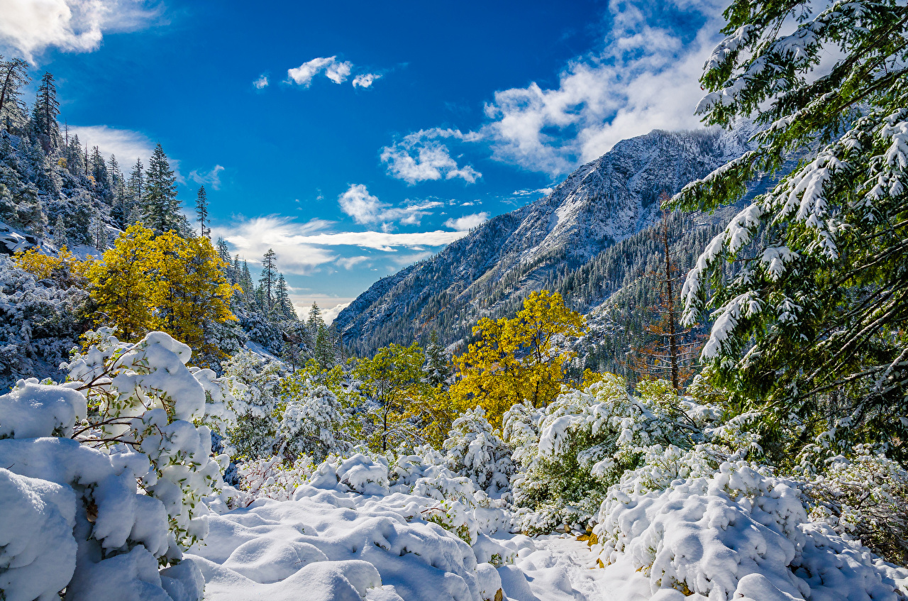 Картинка Горы Природа лес Небо Снег Пейзаж дерево Облака гора Леса снега снегу снеге дерева облако Деревья облачно деревьев