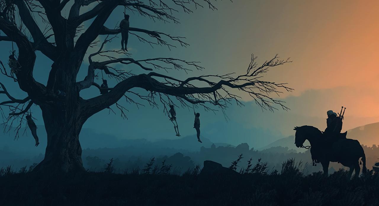 Фотография The Witcher 3: Wild Hunt лошадь Силуэт Игры Ветки Вечер Деревья Ведьмак 3: Дикая Охота Лошади силуэты силуэта компьютерная игра ветвь ветка на ветке дерево дерева деревьев