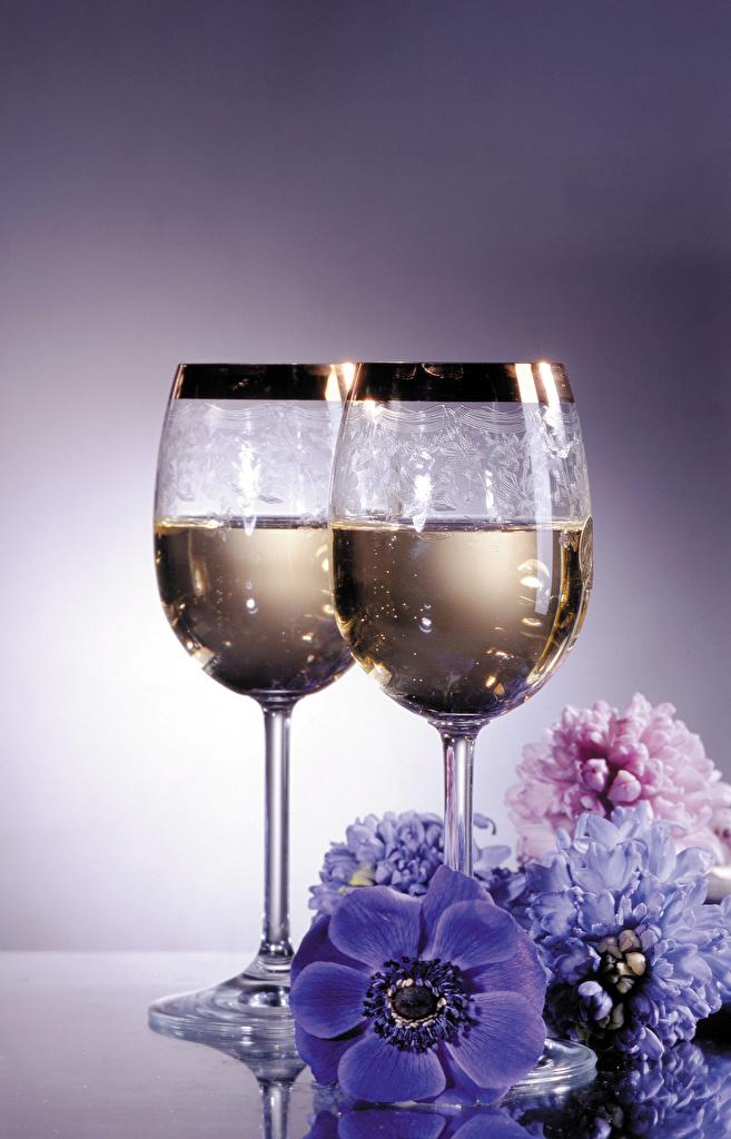 Картинки Игристое вино цветок бокал Гиацинты Ветреница Продукты питания Натюрморт  для мобильного телефона Шампанское Цветы Еда Пища Бокалы Анемоны