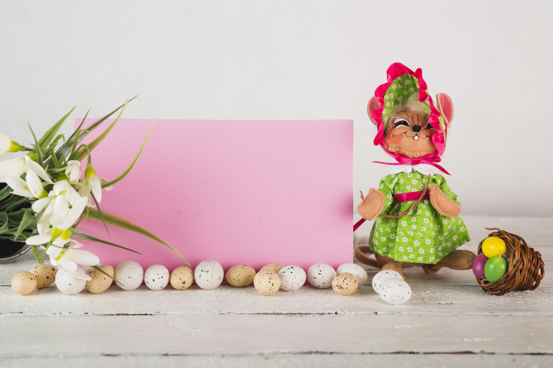 Фотографии Пасха Кролики Яйца Галантус Корзинка Шаблон поздравительной открытки Праздники кролик яиц яйцо яйцами корзины Корзина Подснежники