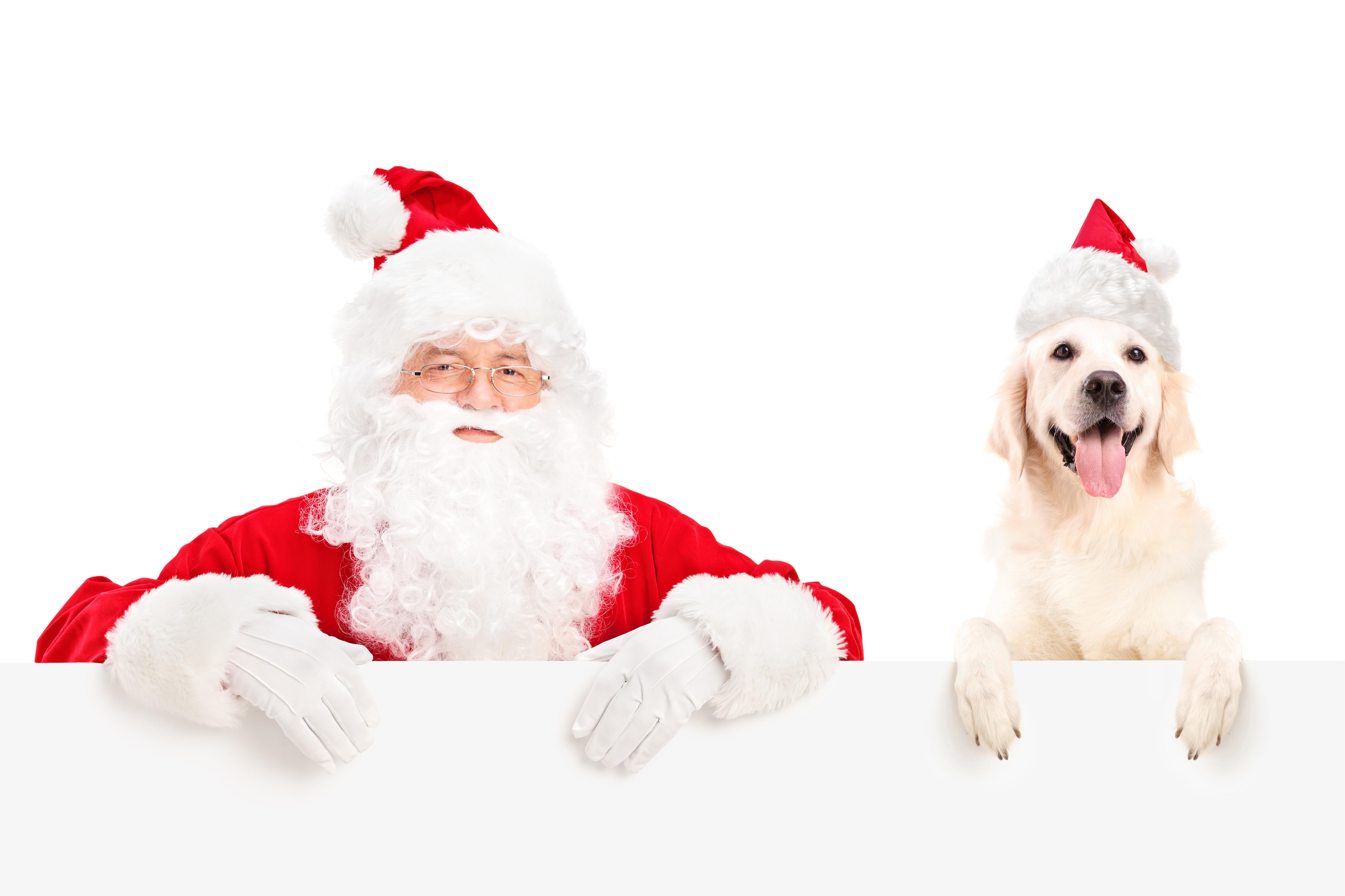 Санта-Клаус бесплатно