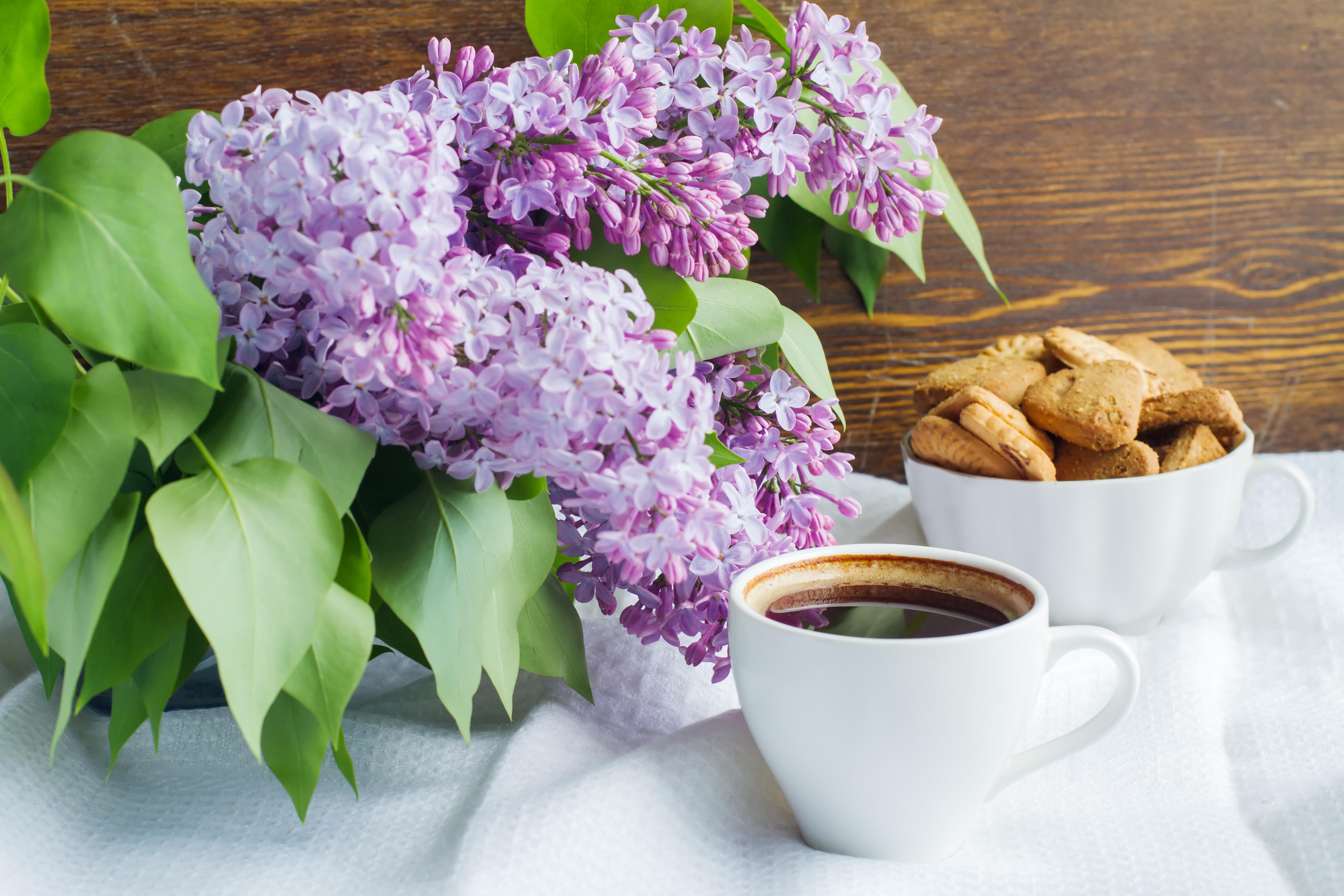 Still-life_Lilac_Coffee_Cookies_Cup_524746_6800x4533.jpg