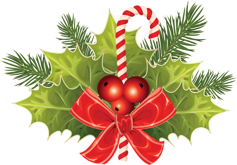 Фотографии Листва Рождество бант Ягоды Ветки лист Листья Новый год ветвь ветка Бантик бантики на ветке