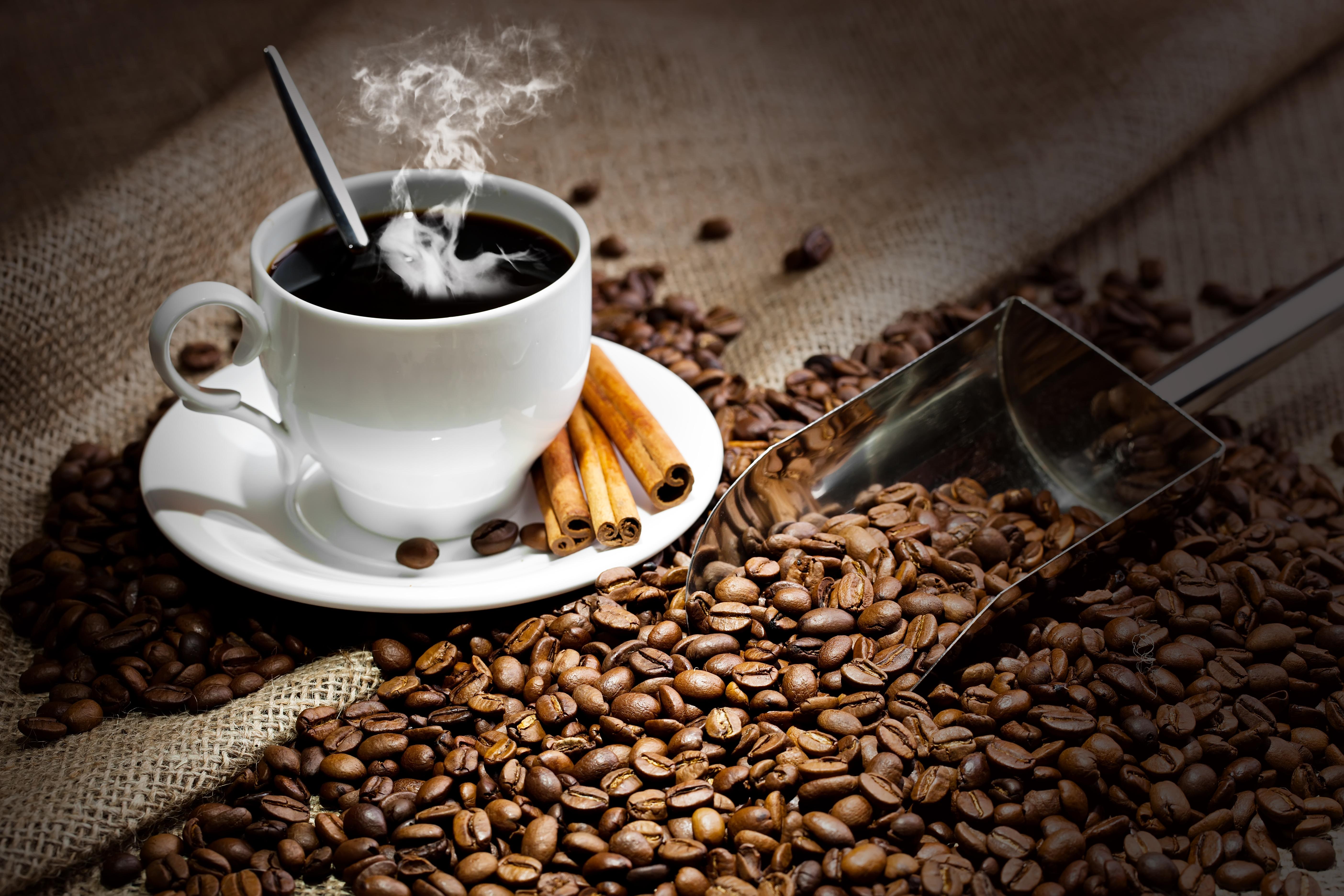 قهوة عربية مختصة