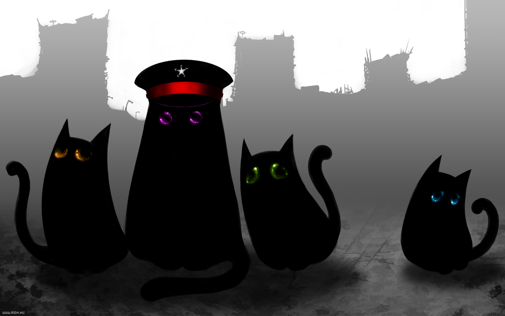 Обои шляпка, Кошка, кот. Кошки foto 12