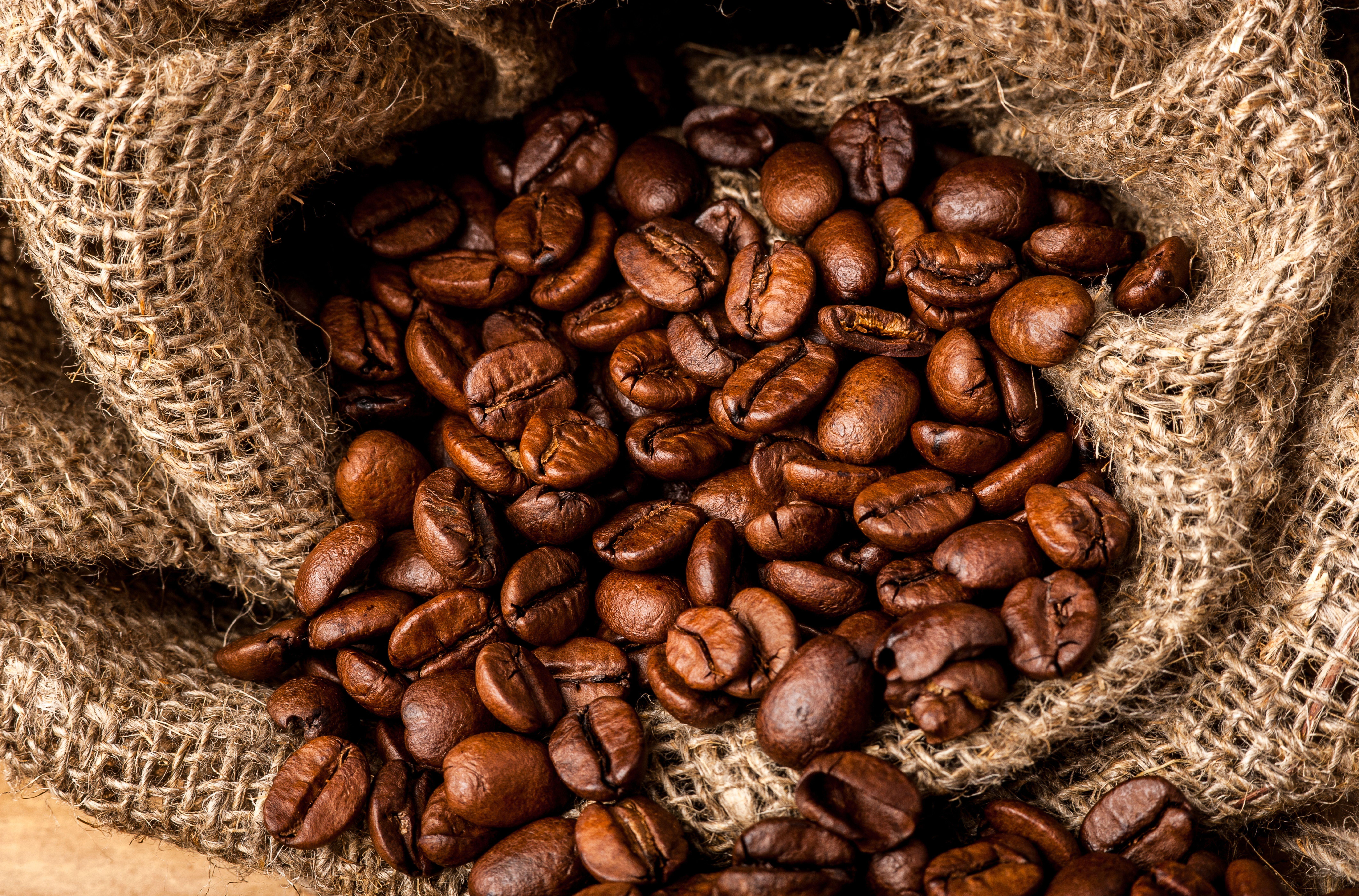 Кофейные зерна с листьями без смс