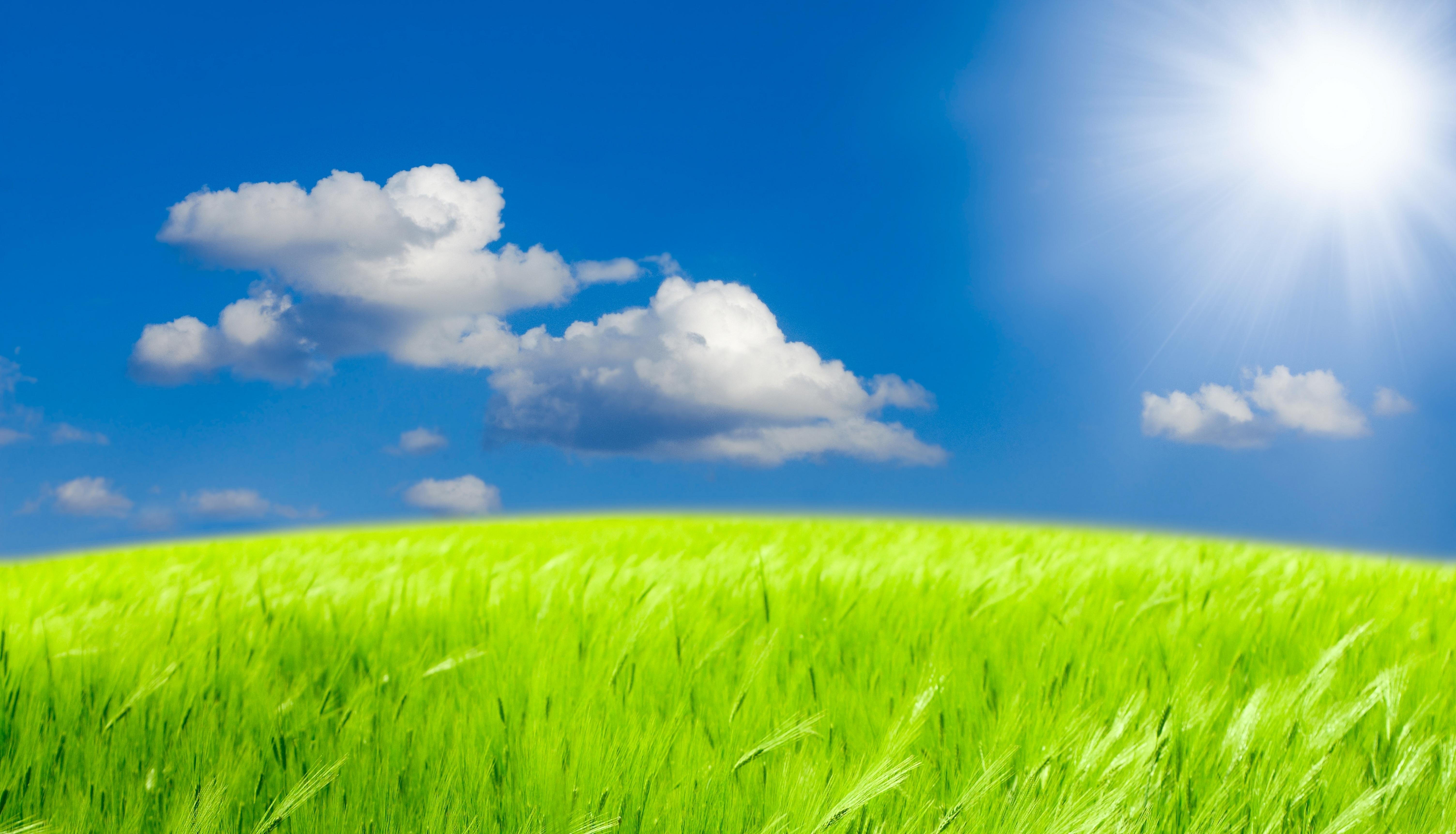 природа небо облака трава горизонт бесплатно