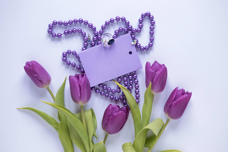 Обои Тюльпаны фиолетовых Цветы Кольцо Шаблон поздравительной открытки Украшения Цветной фон Фиолетовый фиолетовые фиолетовая кольца кольца