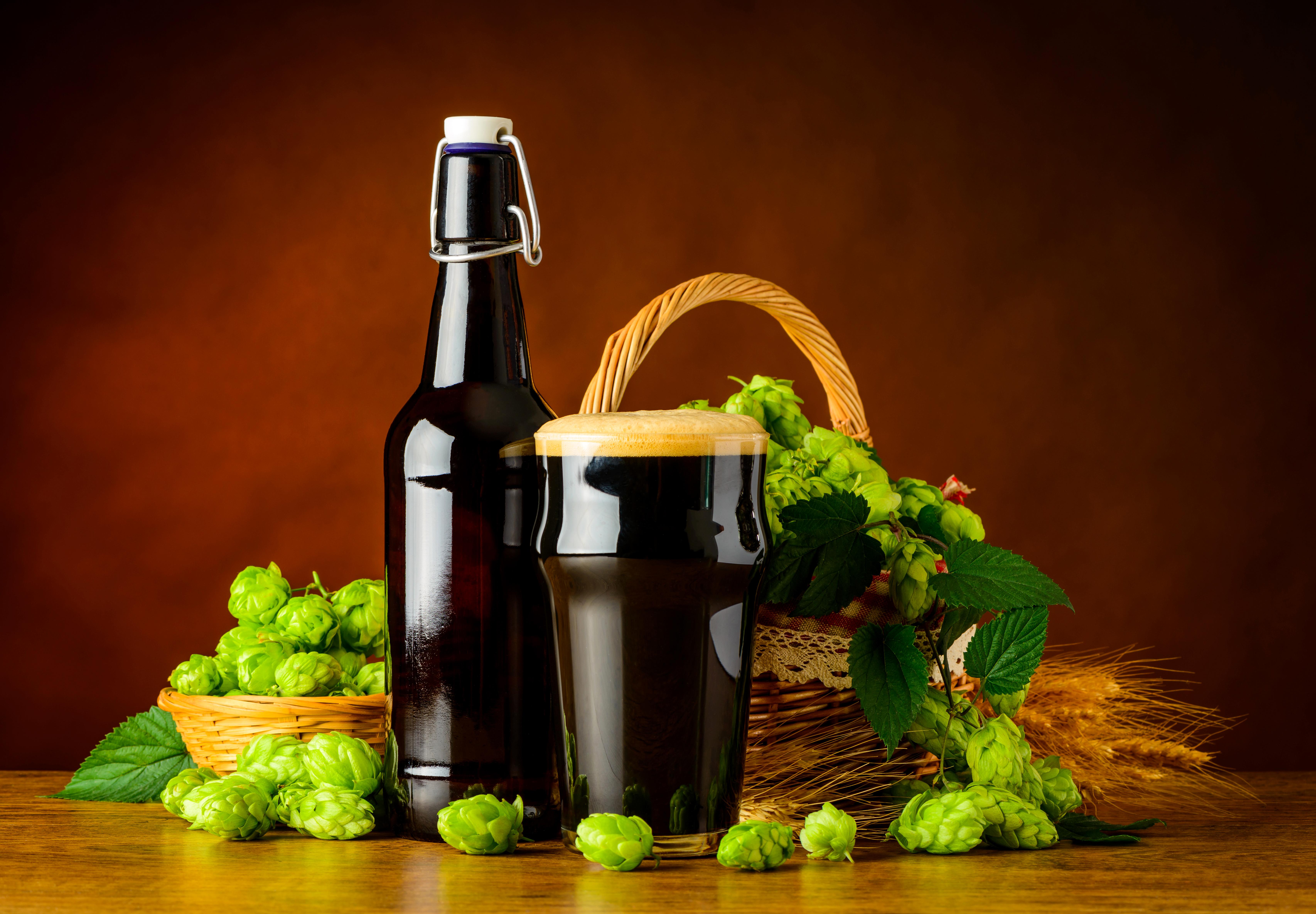 Картинки Пиво Хмель Стакан Пища Пена Бутылка стакана стакане Еда пене пеной бутылки Продукты питания
