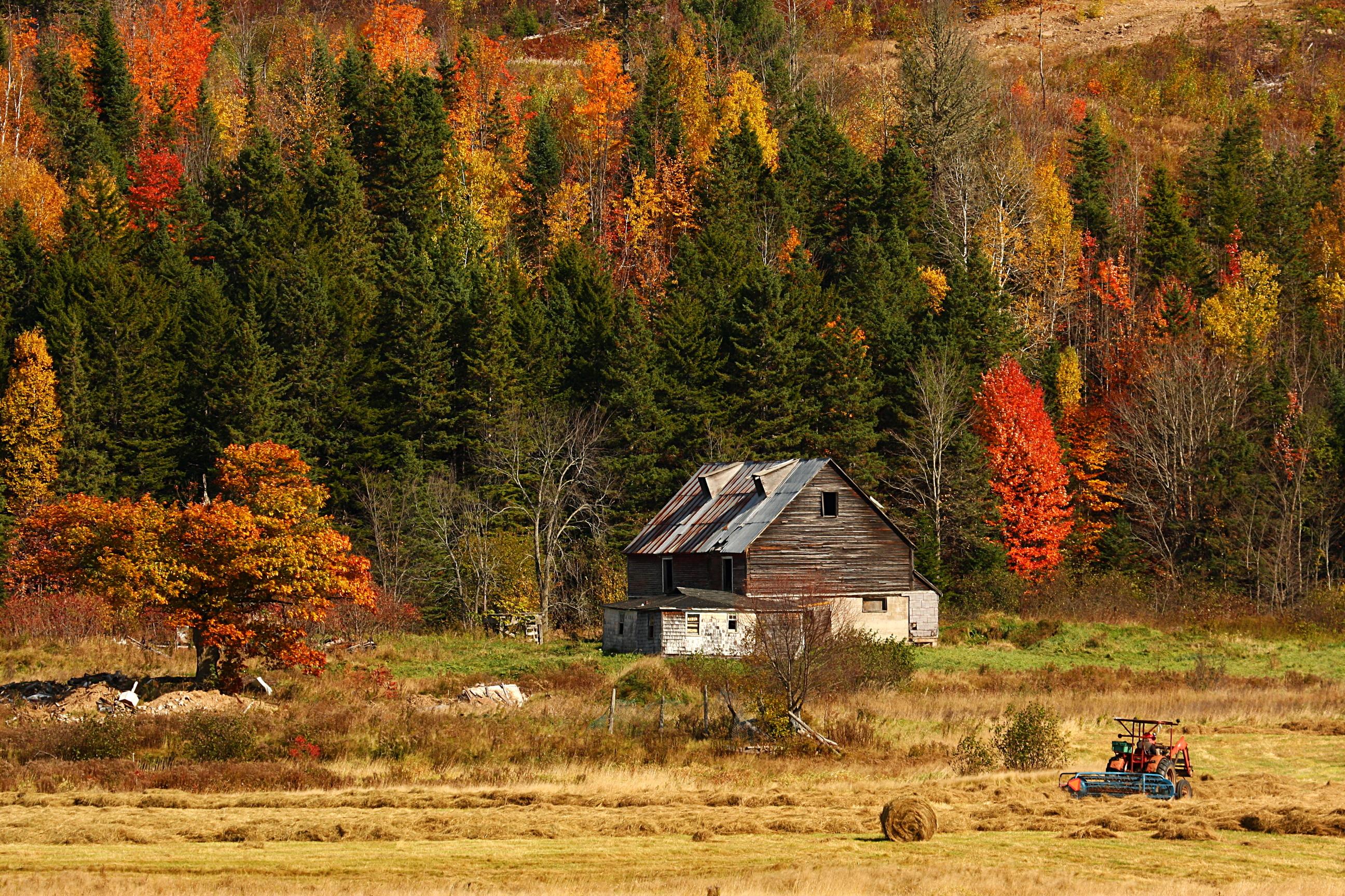 Природа дом осень скачать