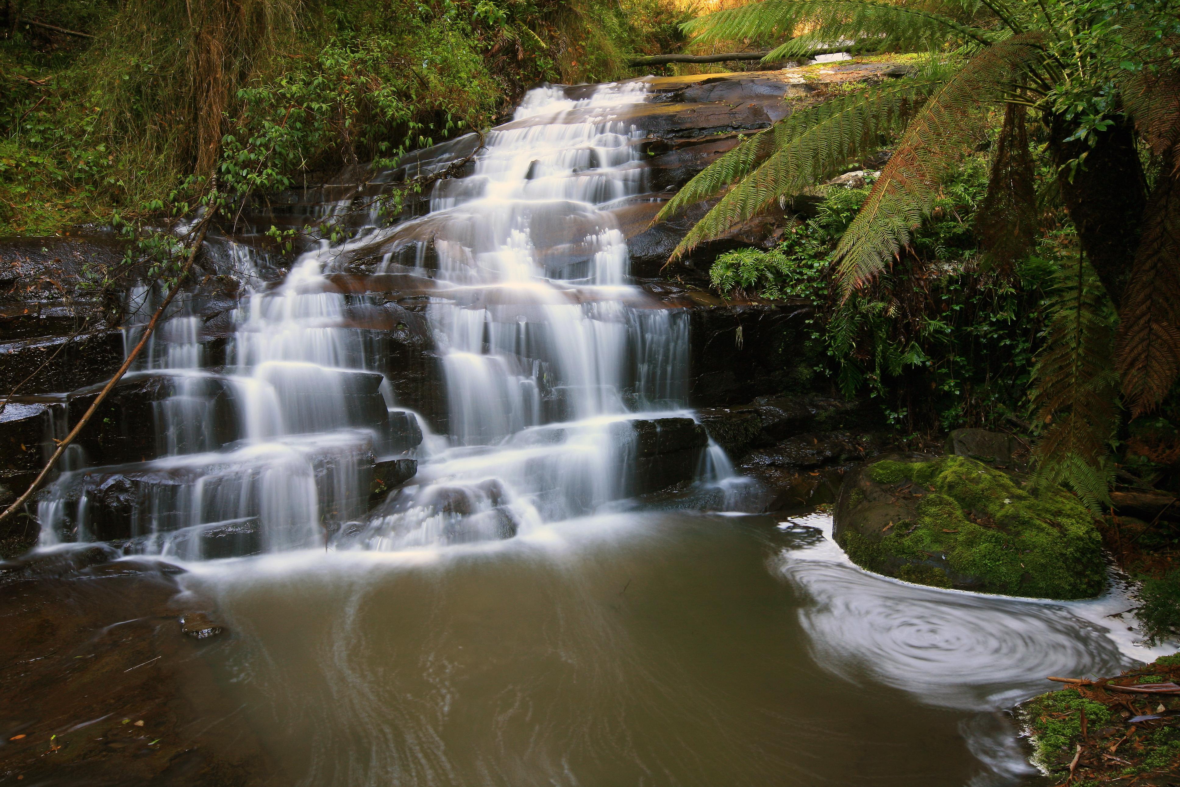 Hopetoun Falls, Otway Ranges, Victoria, Australia скачать