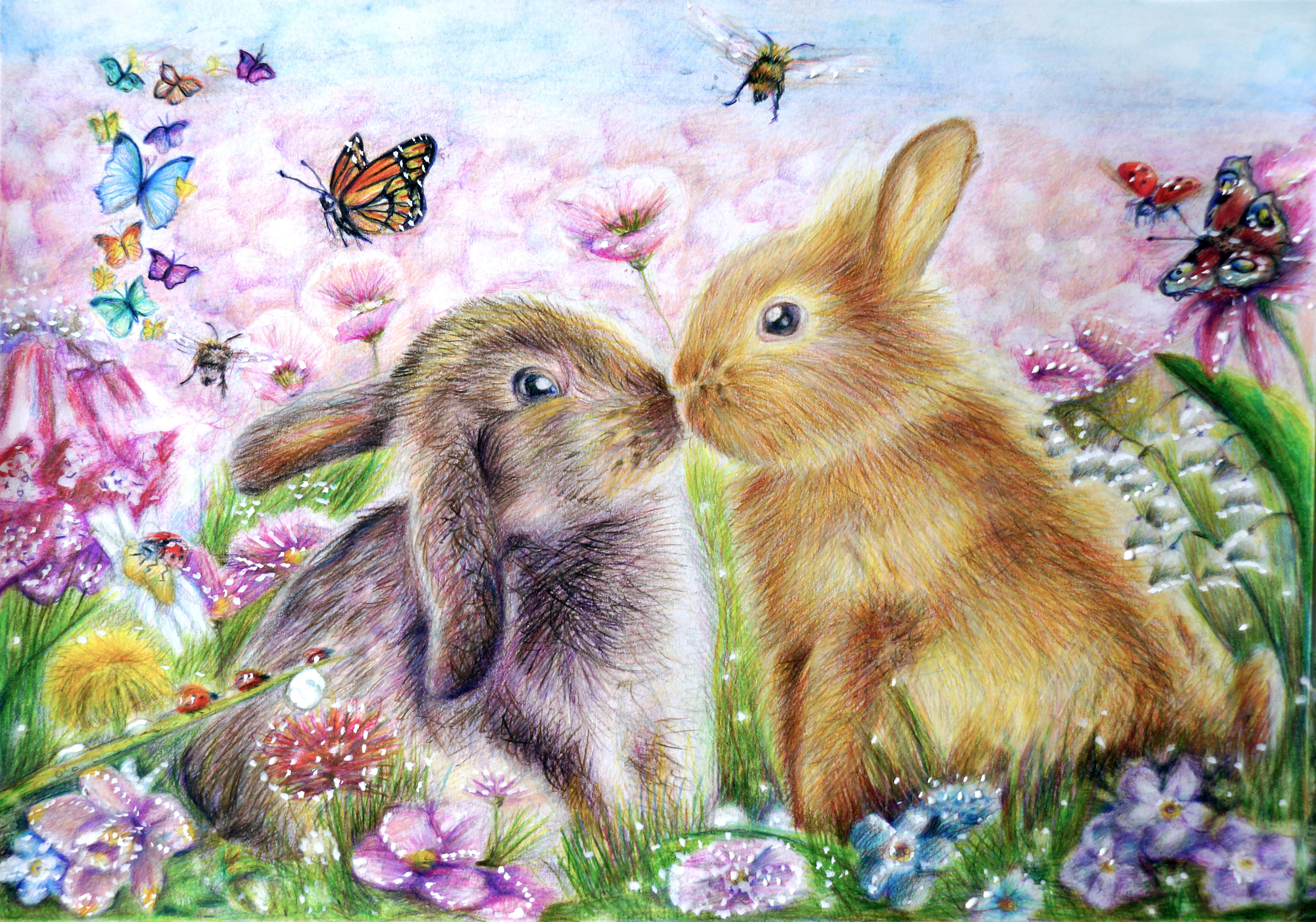 Картинки Зайцы Бабочки 2 животное Рисованные бабочка два две Двое вдвоем Животные