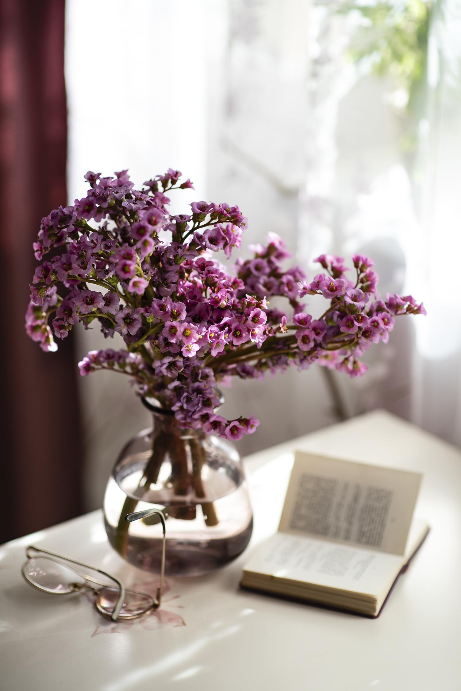 Фотографии Badan Цветы вазе книги очков Натюрморт  для мобильного телефона цветок Ваза вазы Очки Книга очках