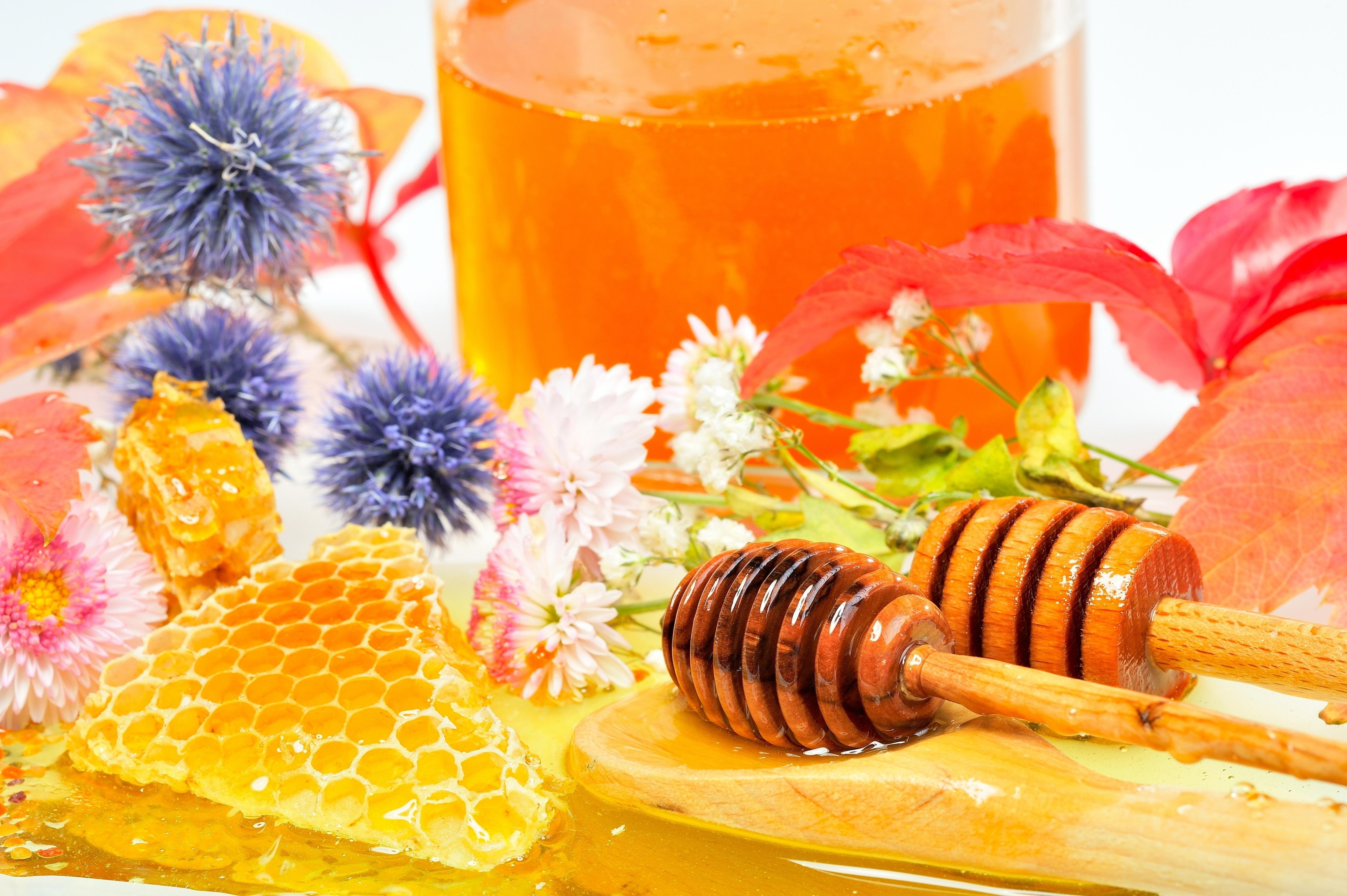 Мёд тосты скачать