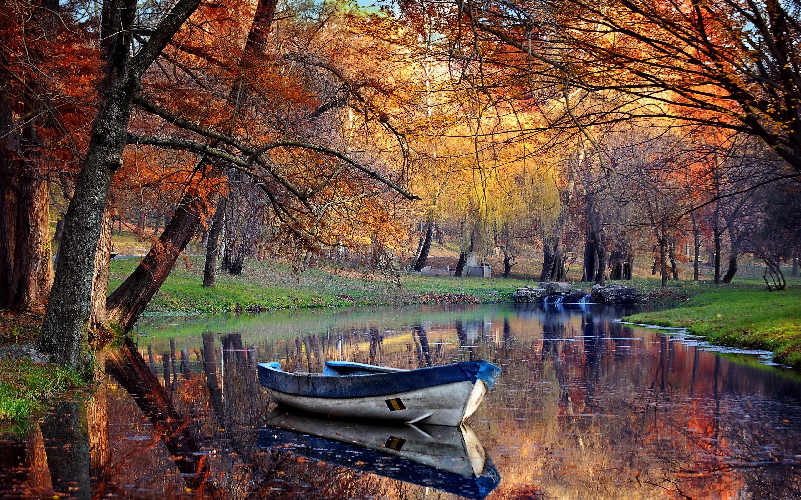 природа река листья осень лес деревья без смс