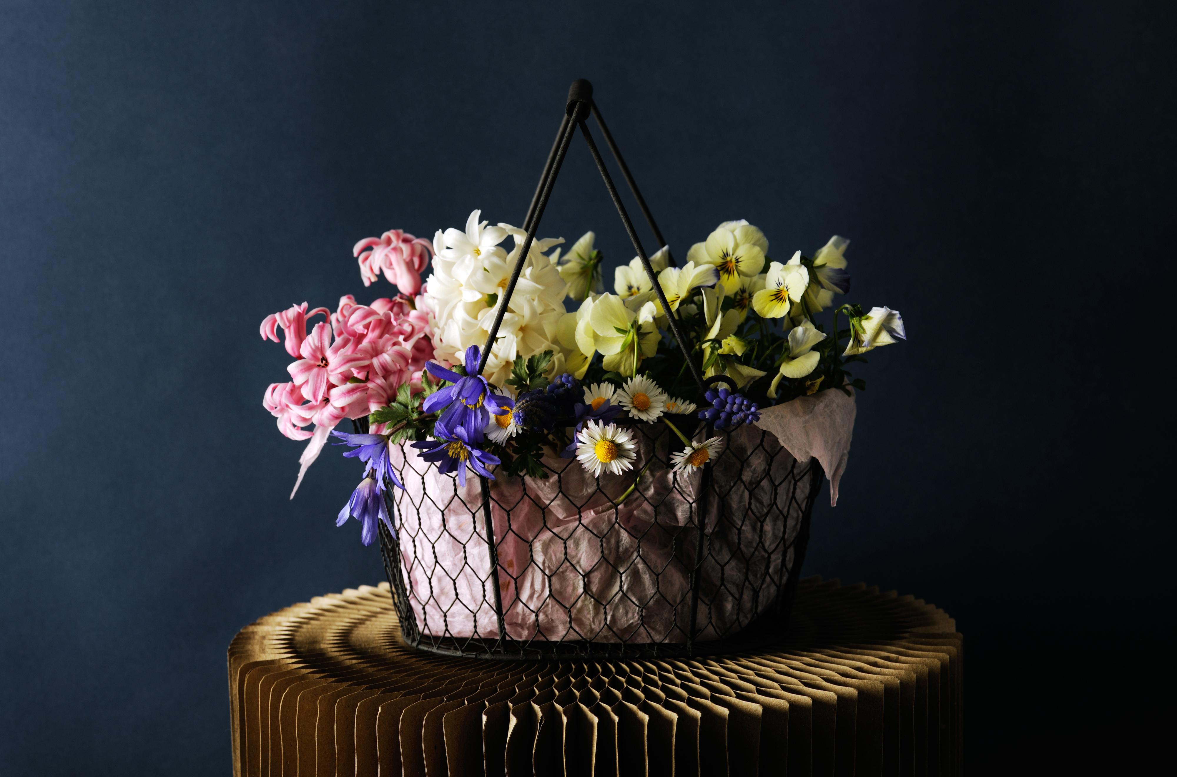 Фото Анютины глазки цветок Корзина Гиацинты 4000x2640 Фиалка трёхцветная Цветы корзины Корзинка