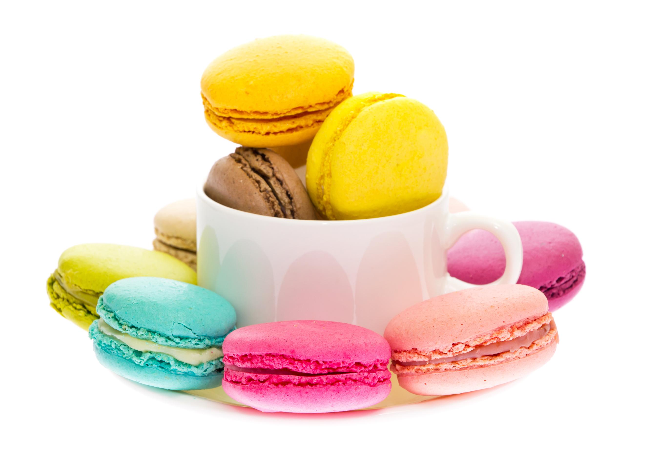 Картинка Макарон Разноцветные Пища чашке Белый фон Еда Чашка Продукты питания белом фоне белым фоном