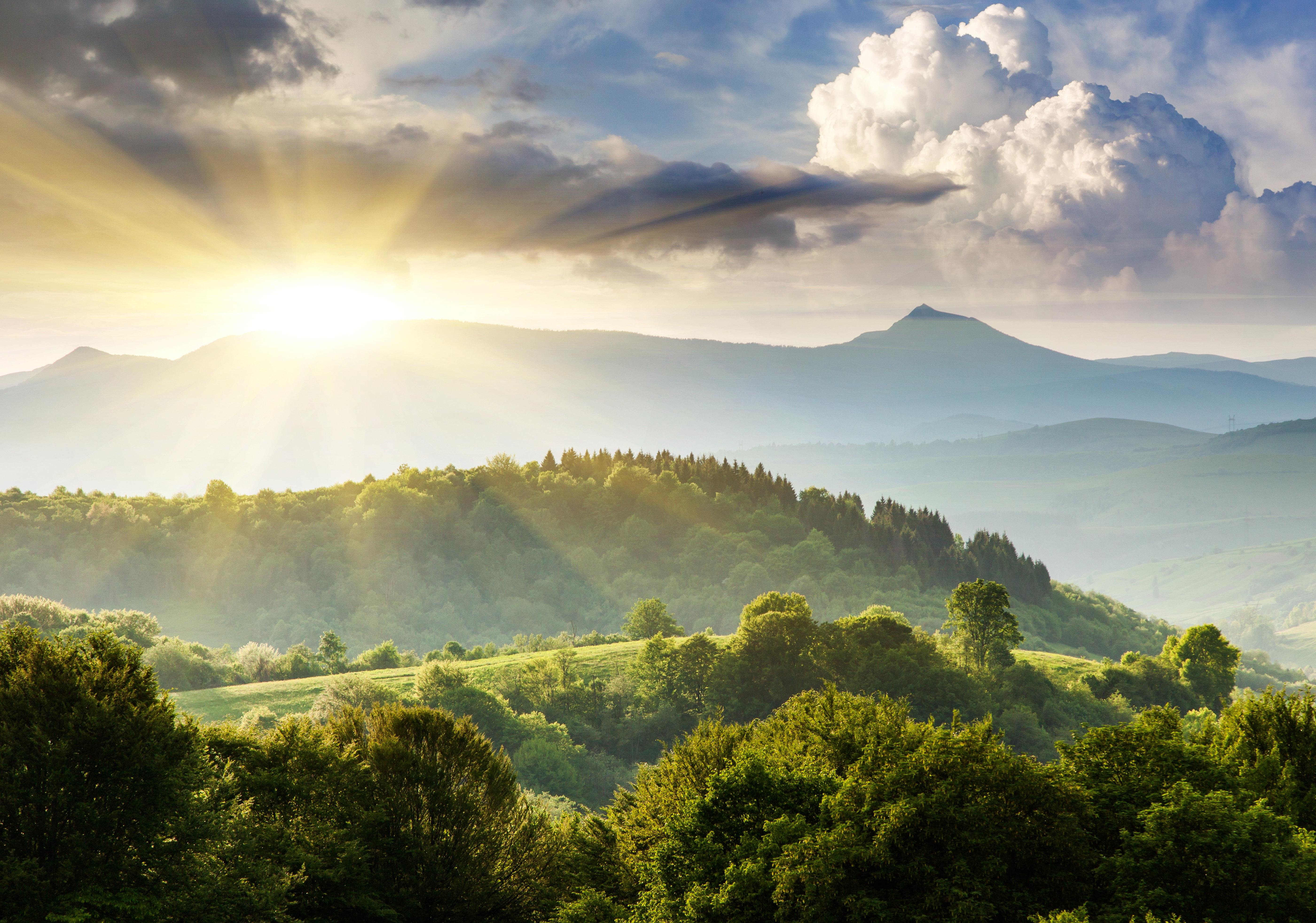 природа облака деревья трава солнце река небо загрузить