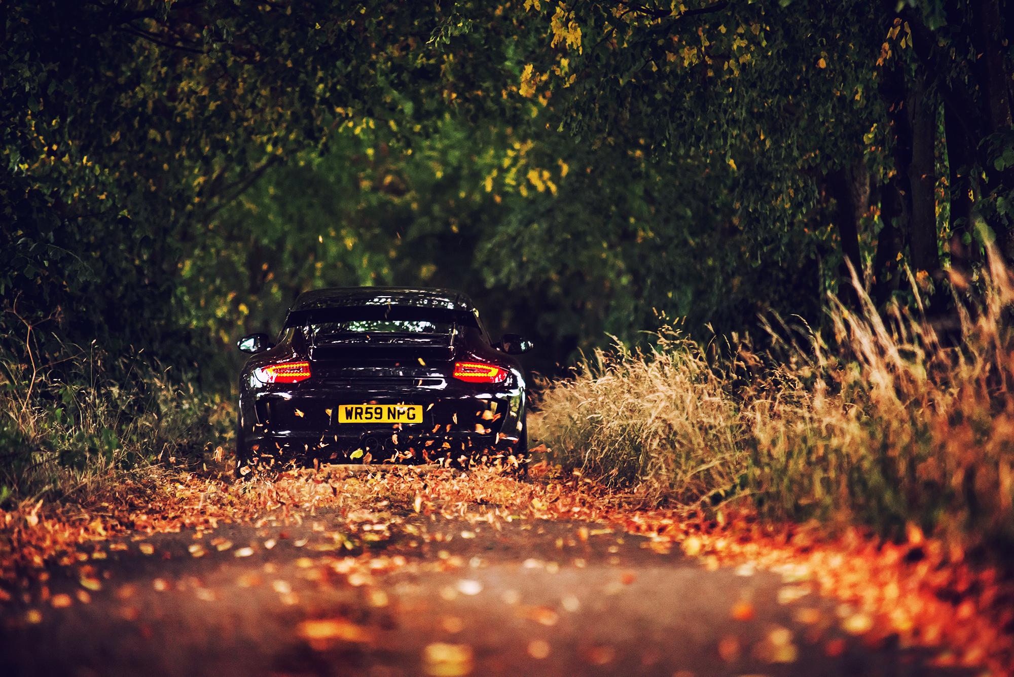автомобиль осень лес дорога без смс
