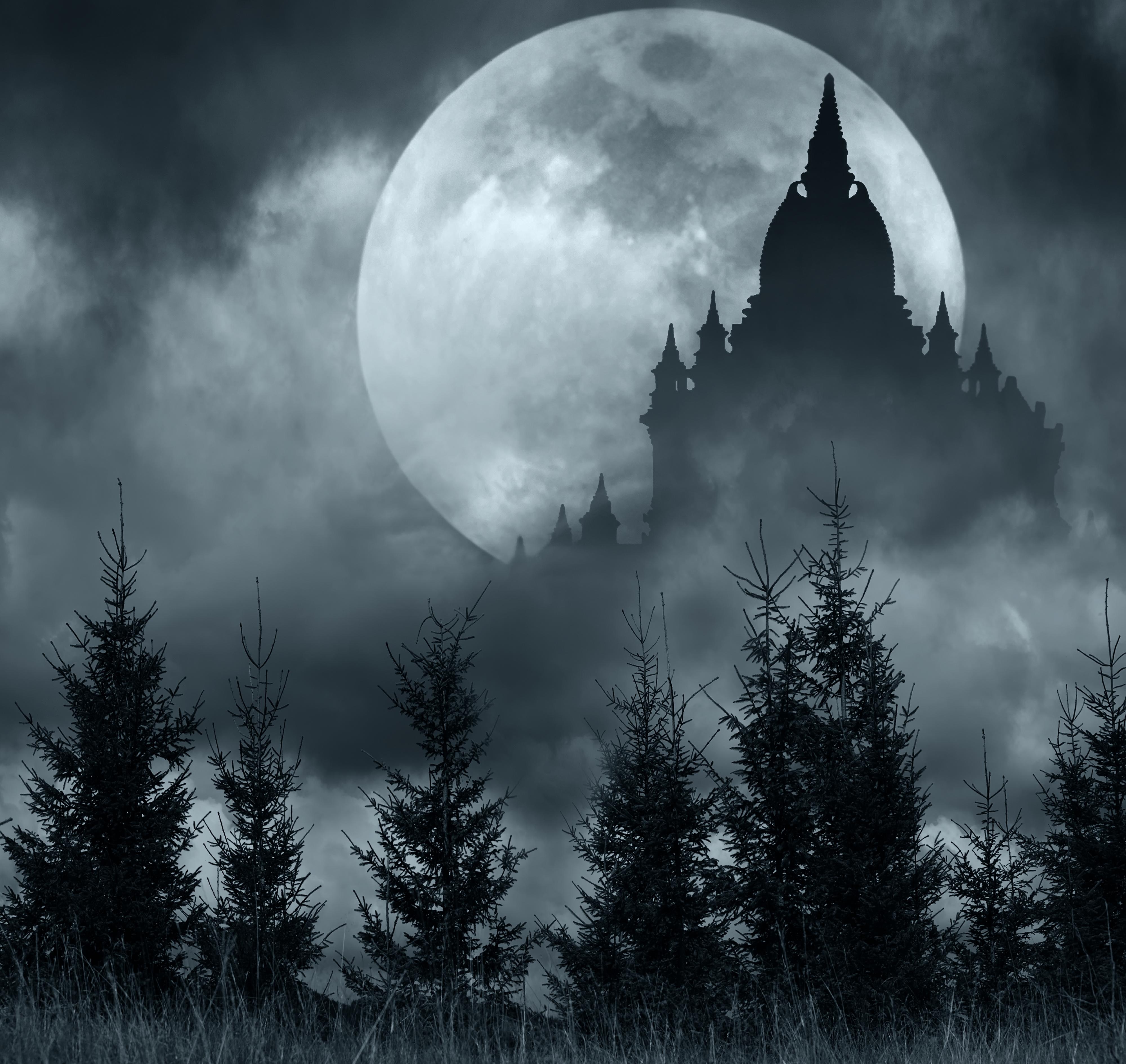 Фотографии Силуэт Ель Природа Луна храм ночью 4000x3780 силуэта силуэты ели луны луной Ночь Храмы в ночи Ночные