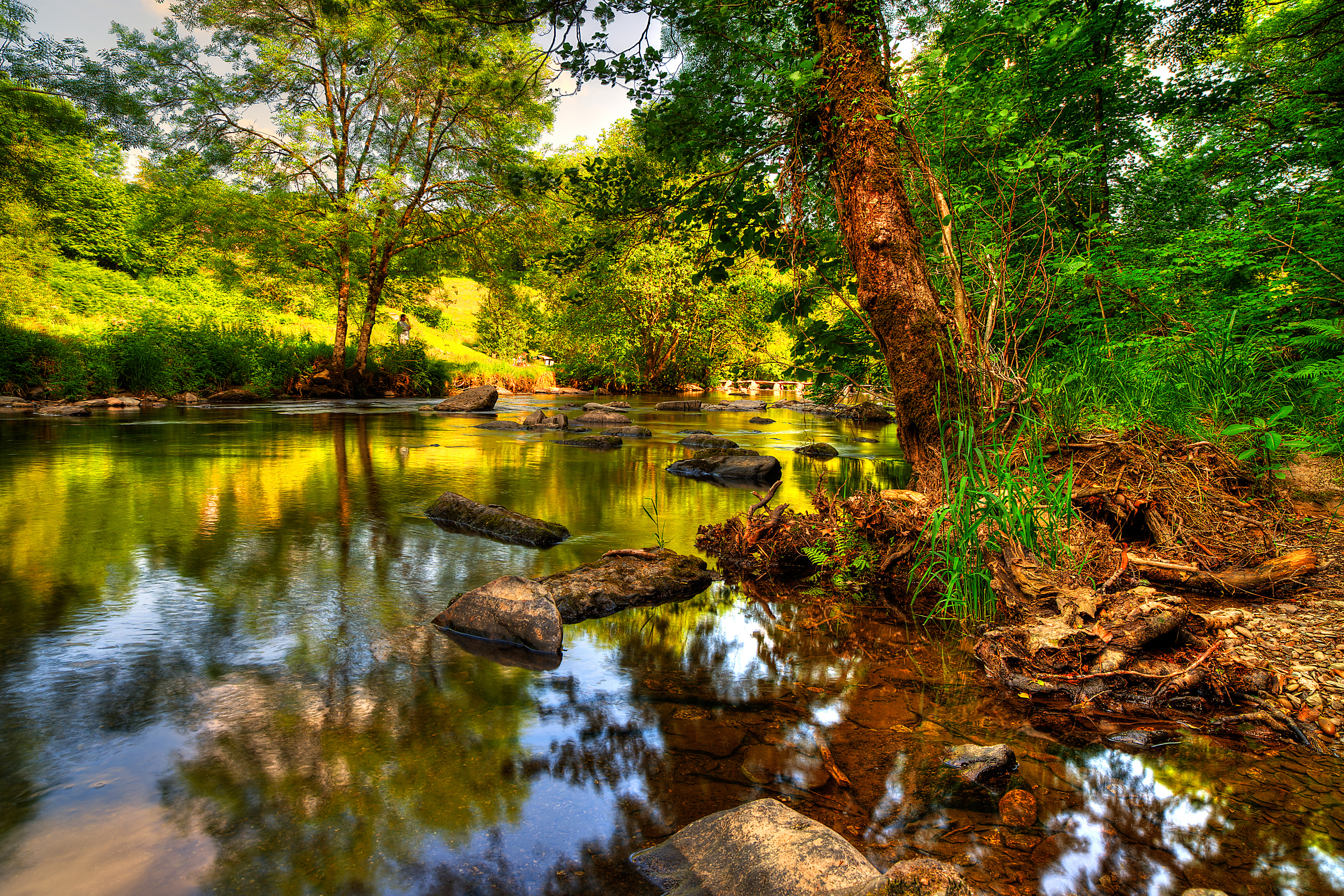 природа камни река деревья nature stones river trees без смс