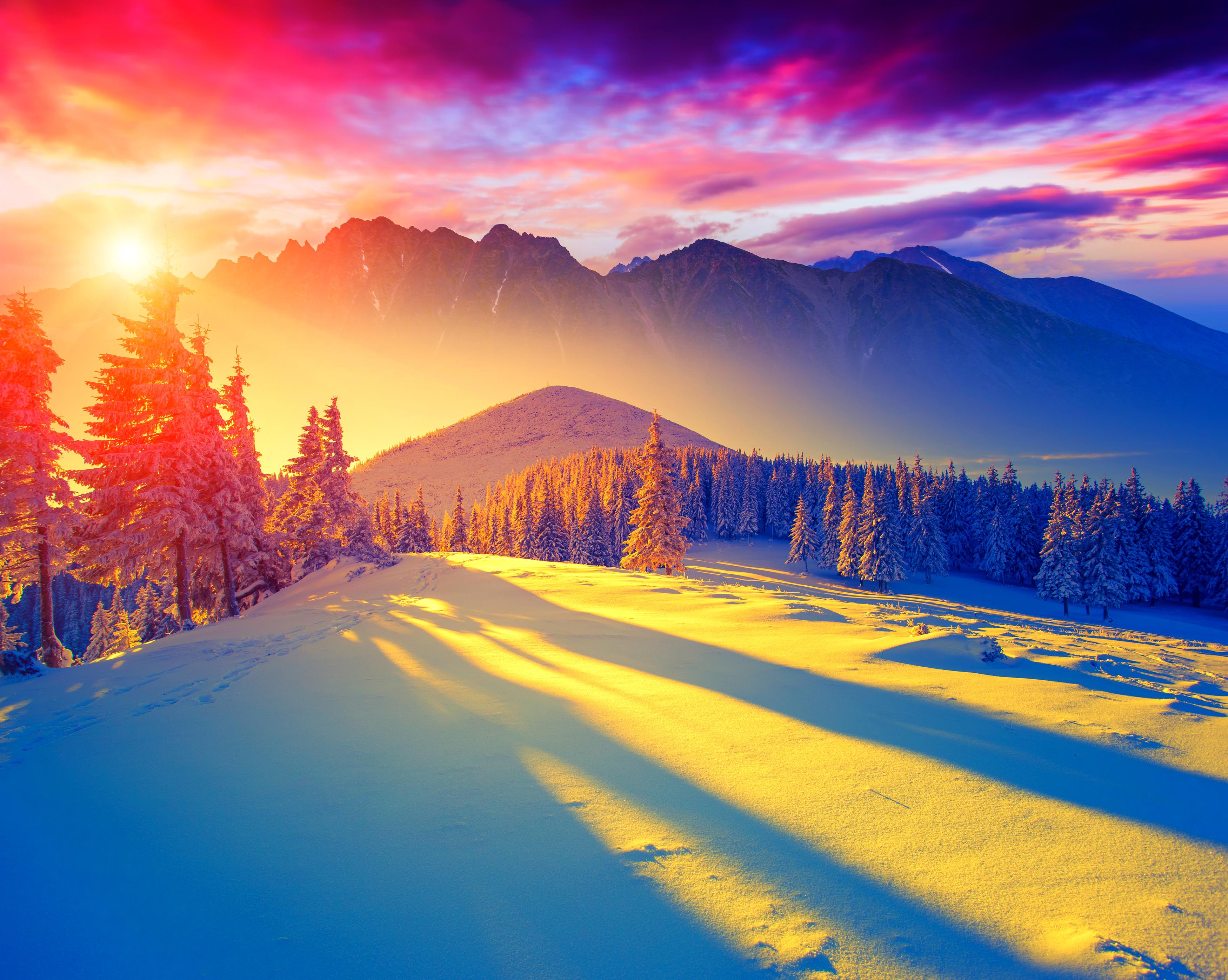 ели, горы, солнце загрузить