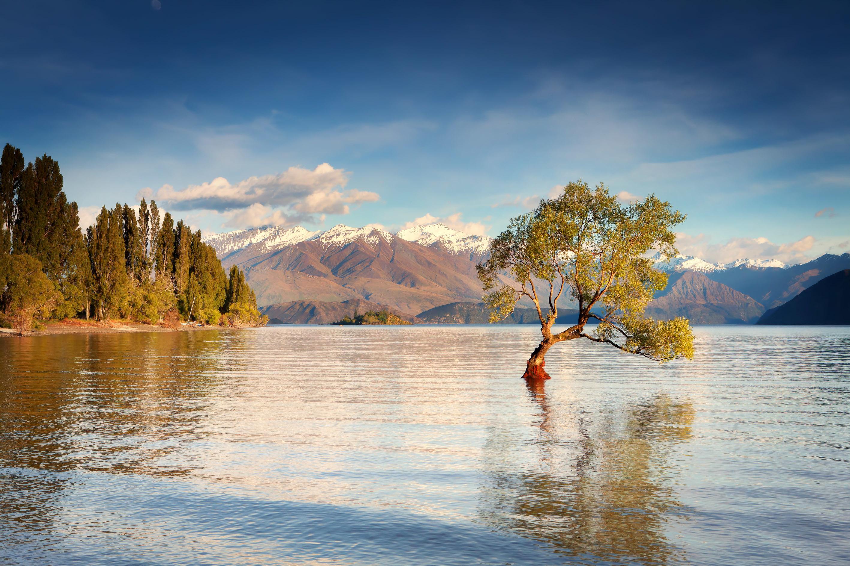 Озеро с островком загрузить