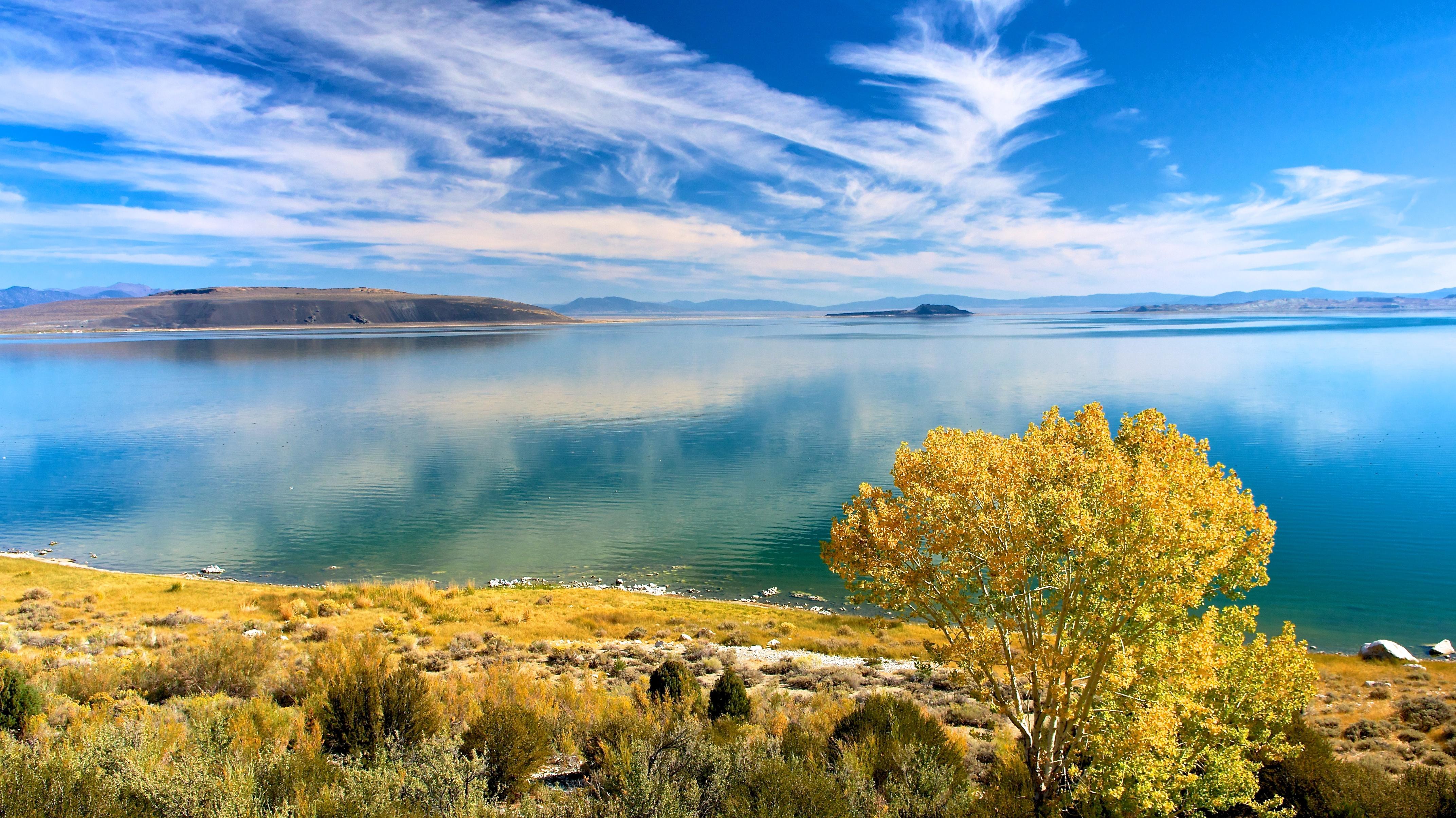 деревья осень небо озеро бесплатно
