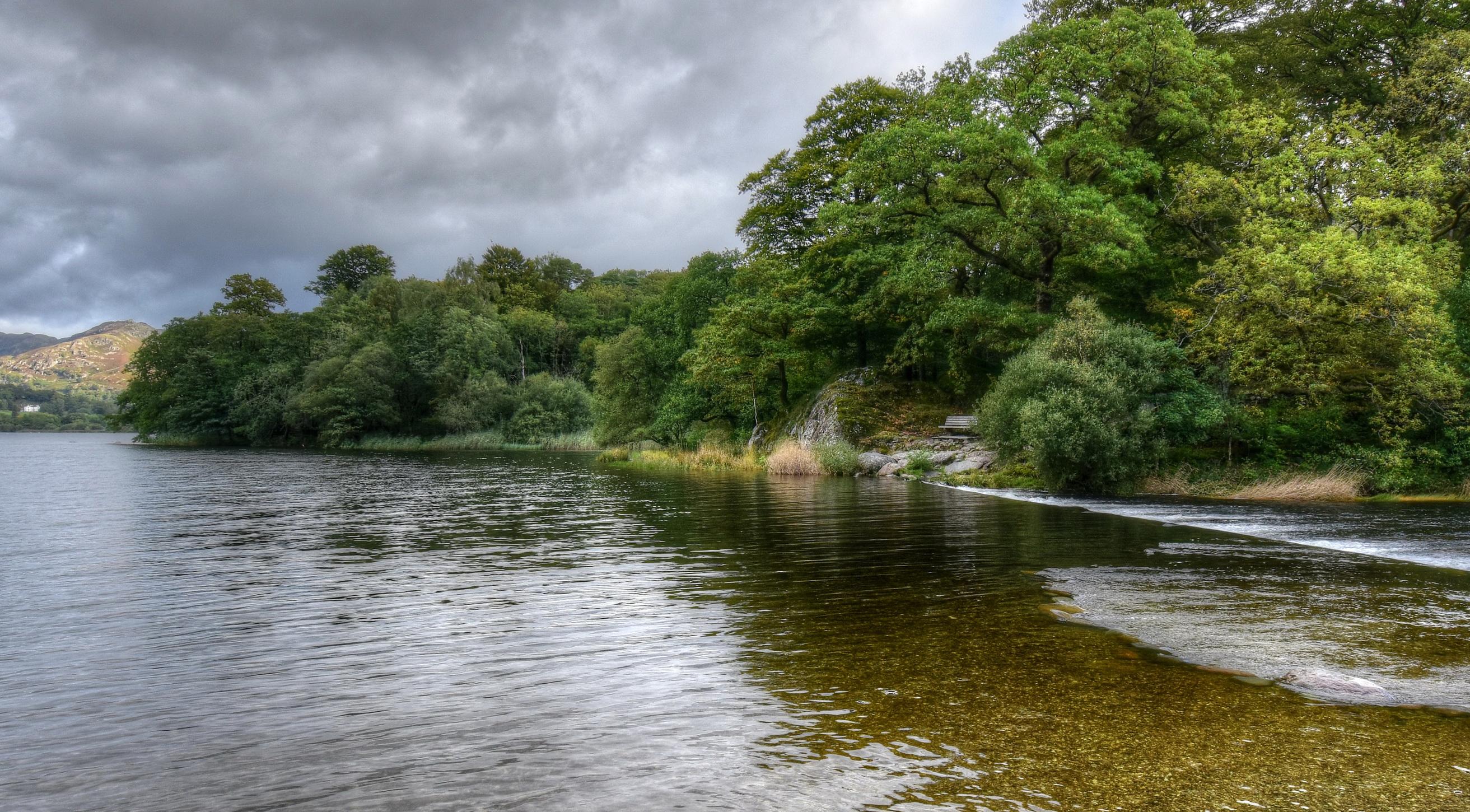 Картинка Англия Grassmere Природа речка Побережье Кусты дерево 2625x1450 Реки берег кустов дерева Деревья деревьев
