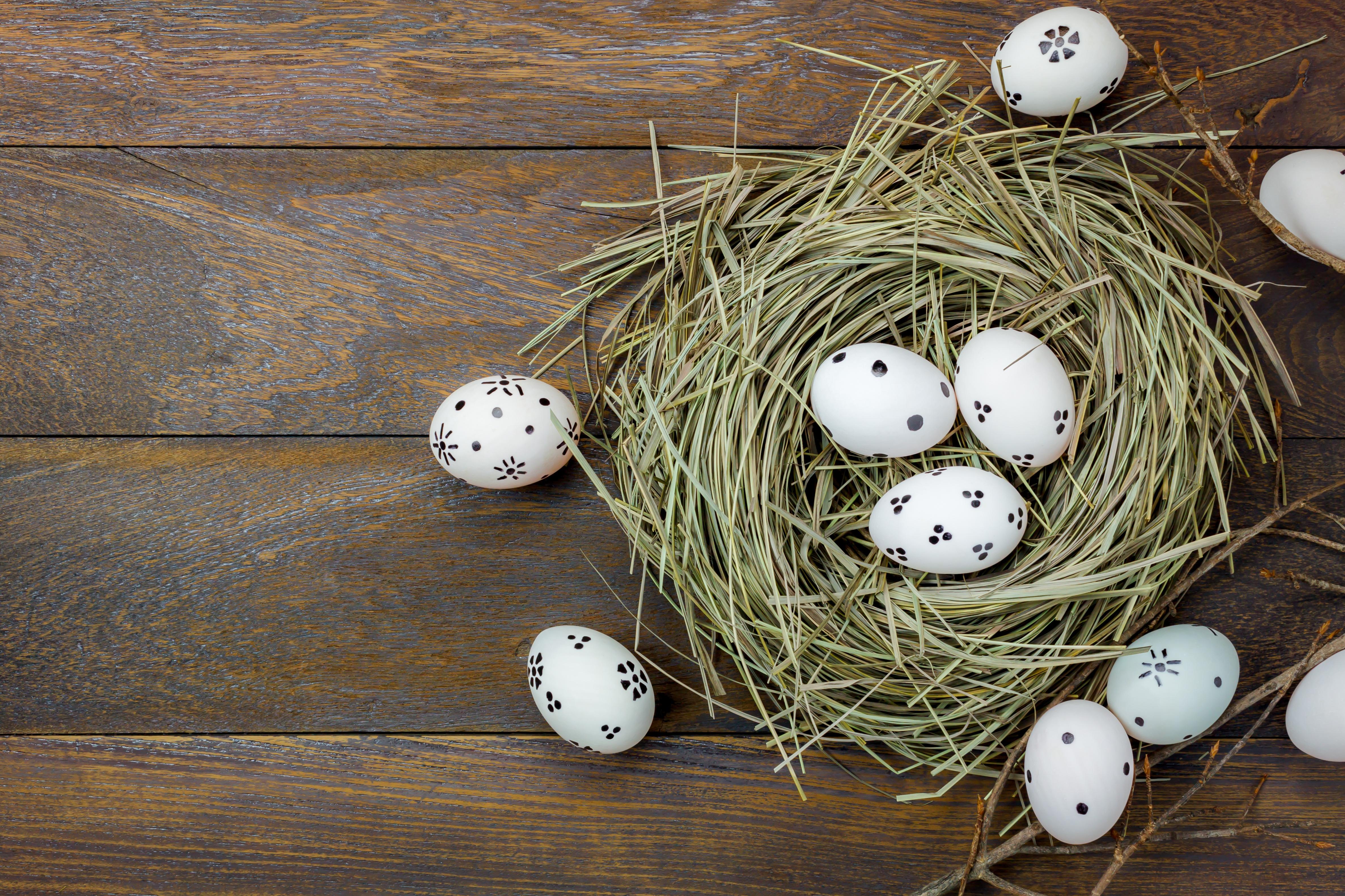 Фотография Пасха яиц гнезде Доски 4745x3163 яйцо Яйца яйцами гнезда Гнездо