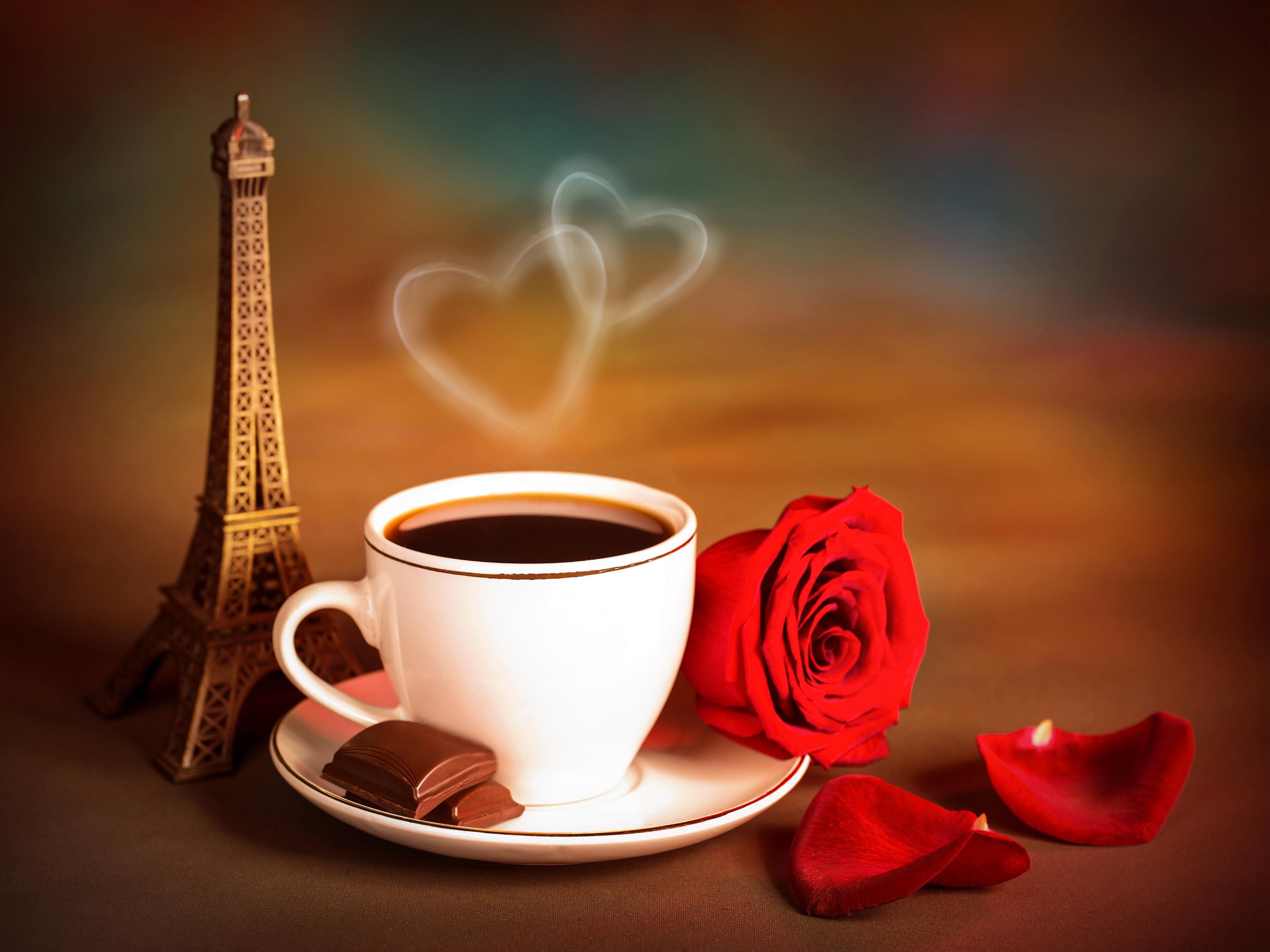 Обои лето Париж Эйфелева башня море пальмы летняя