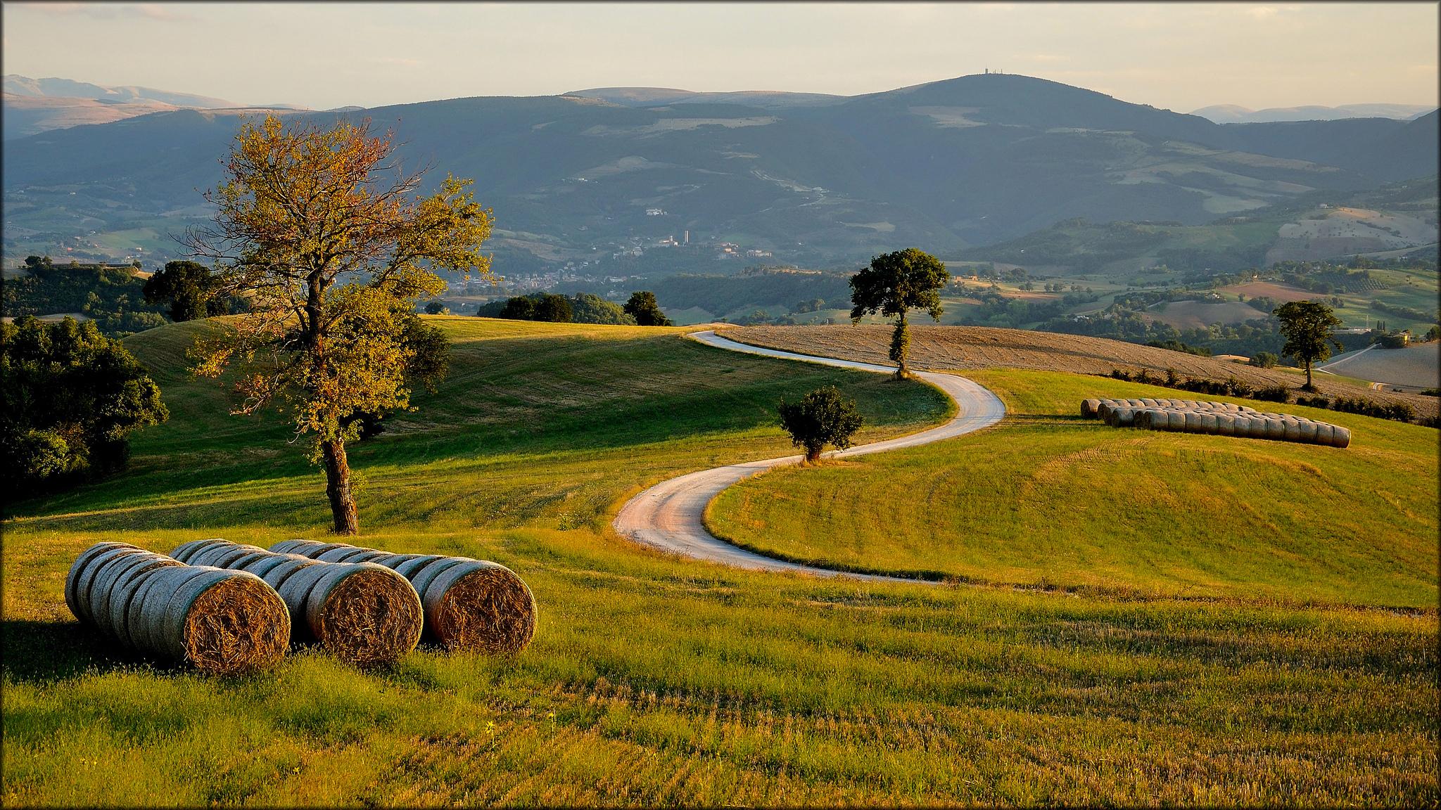 холмы долина дорожка hills valley track без смс