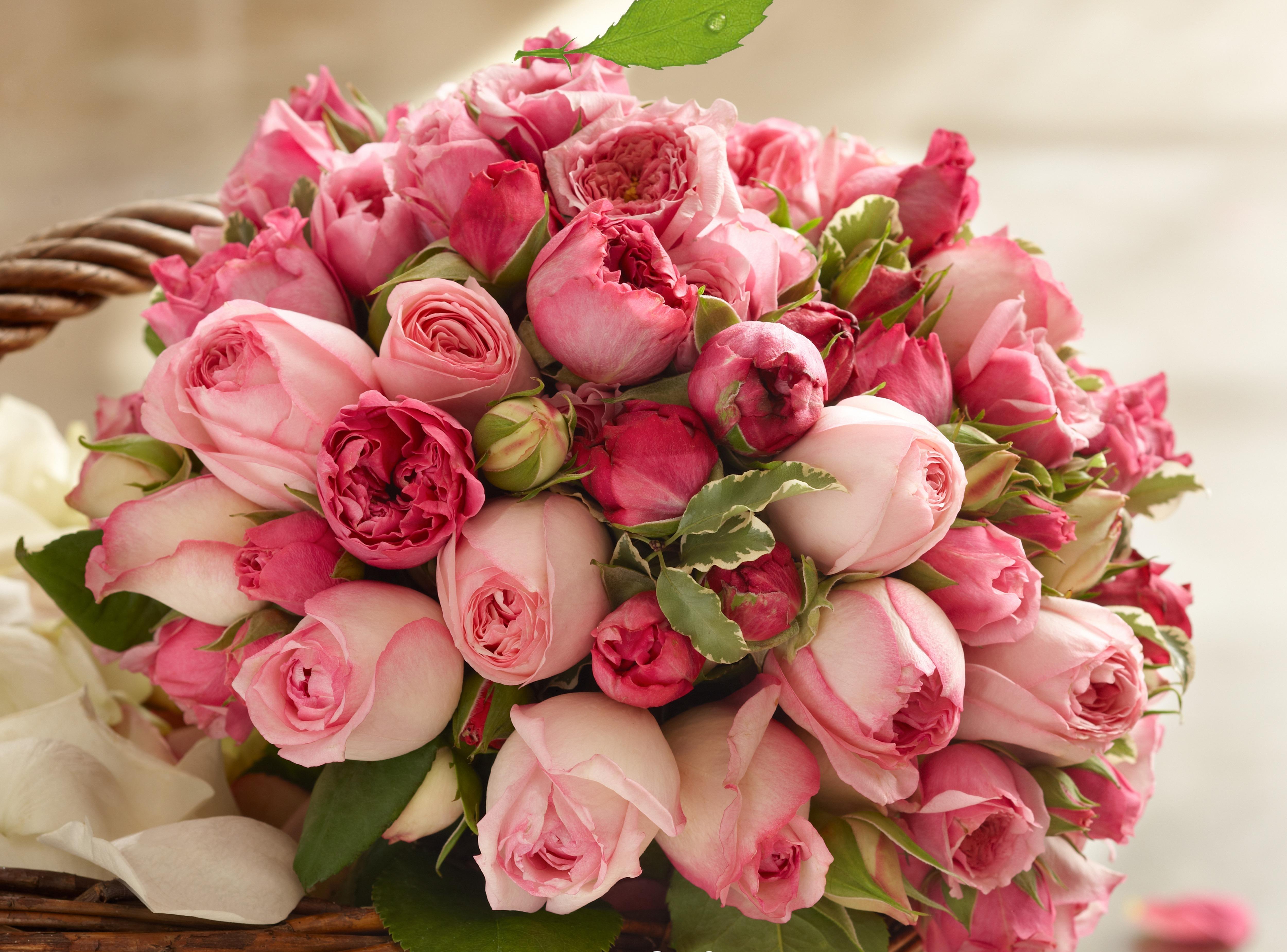 Доставка цветов в Томске, купить цветы и букеты Мне розы 77