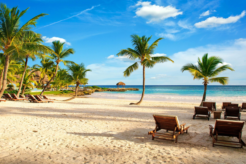 Фото Курорты пляжа Море Природа Пальмы тропический Шезлонг 3000x2000