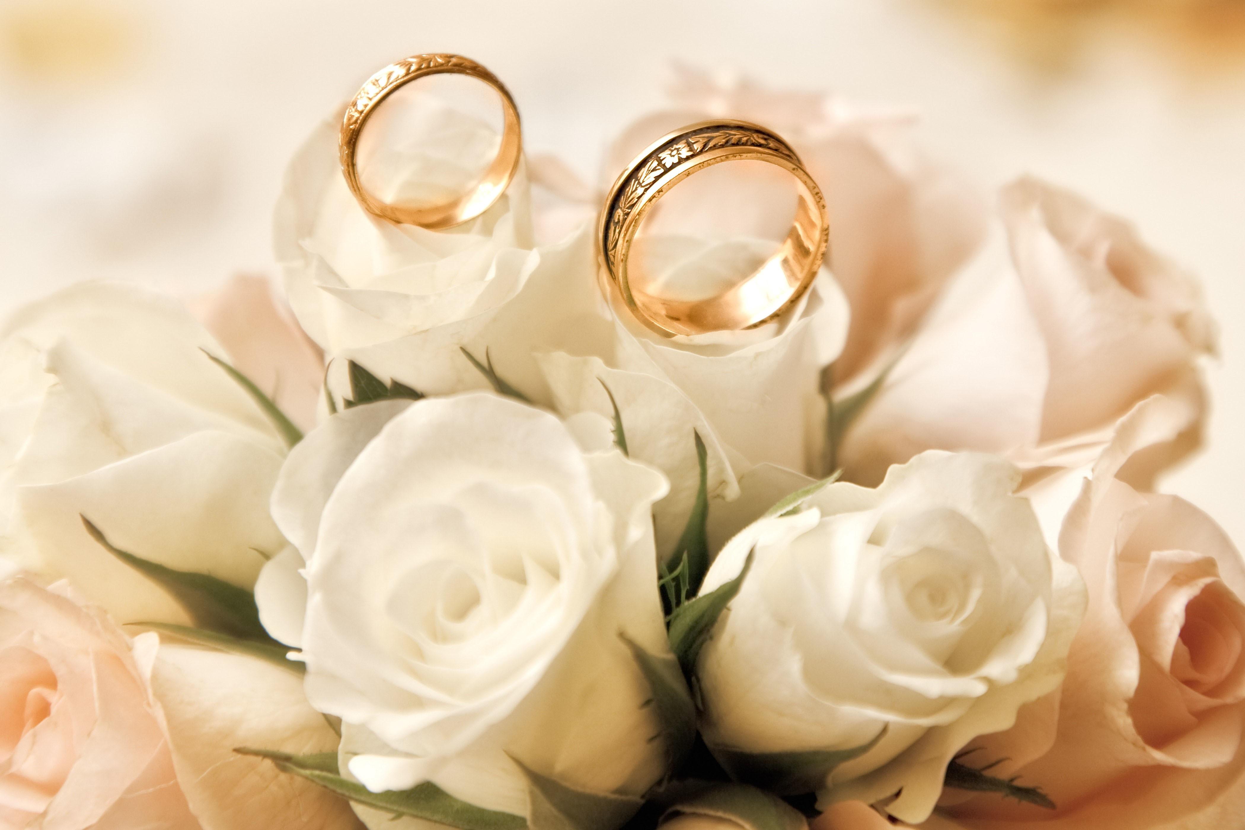 обручальные кольца с жемчугом скачать